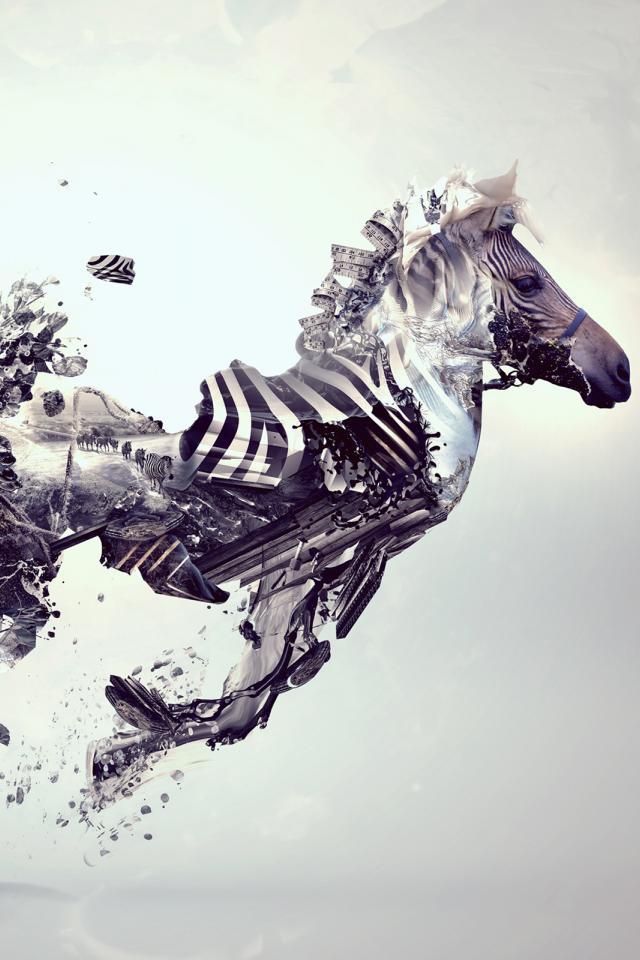 417 Zebra
