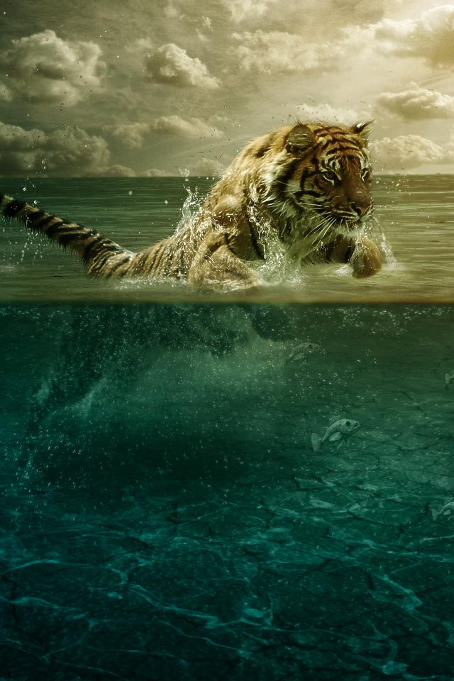 LionHunt Lion Hunt