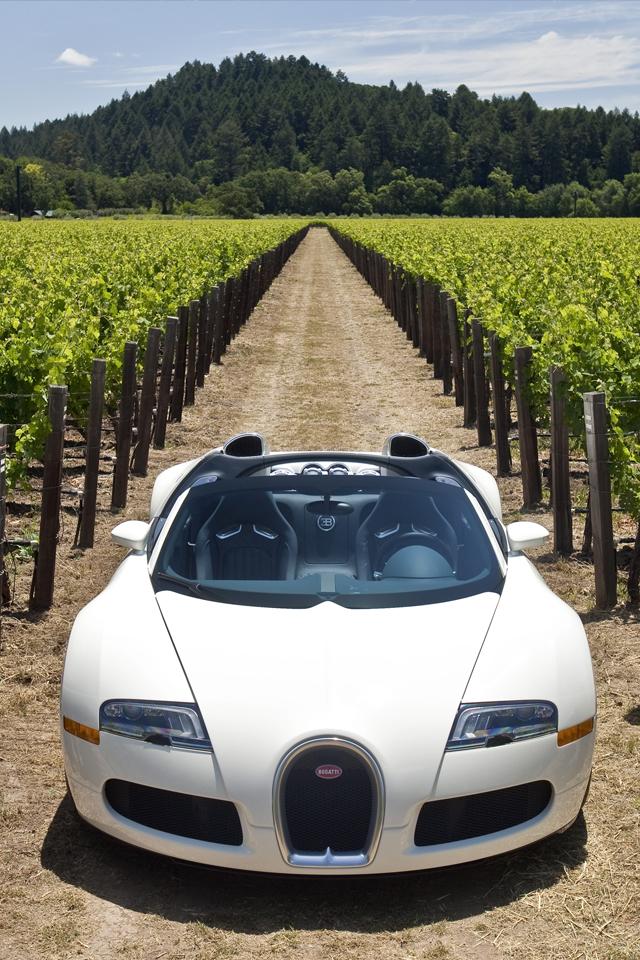 bugattiveyrone 3W Bugatti Veyron Grapp
