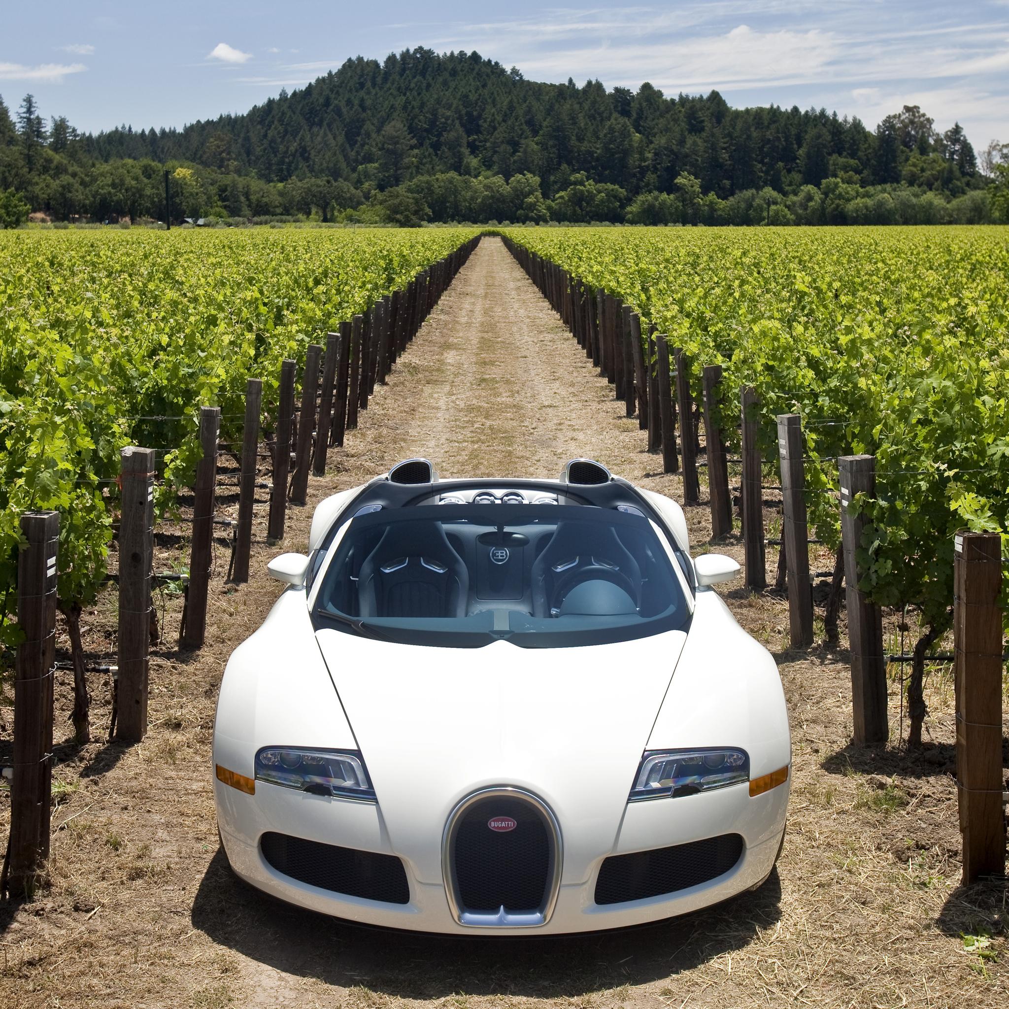 bugattiveyrone 3W iPad Bugatti Veyron Grapp   iPad