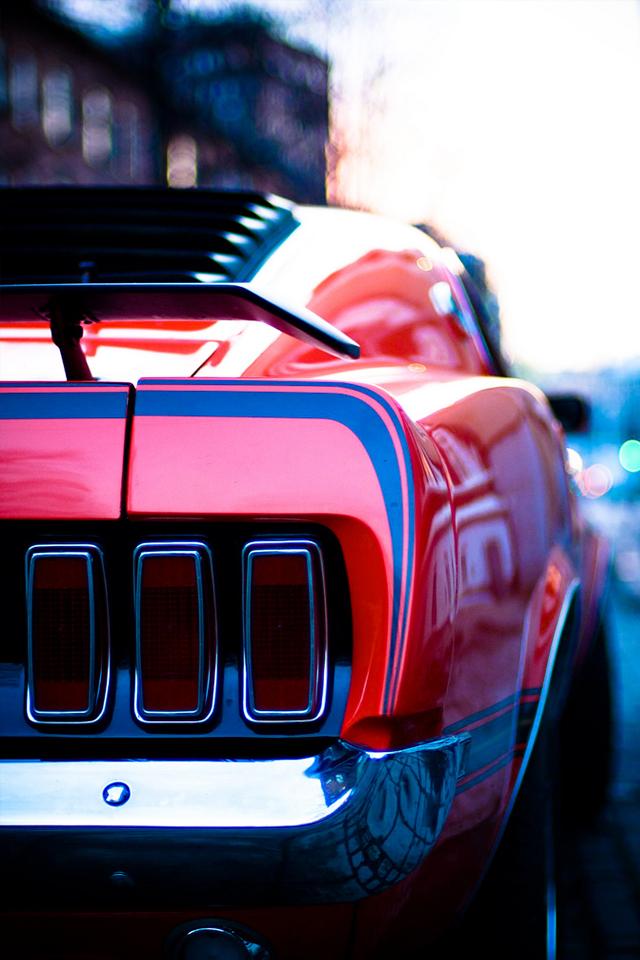 tumblr l5ibr18ioG1qcpjngo1 1280 Mustang Back