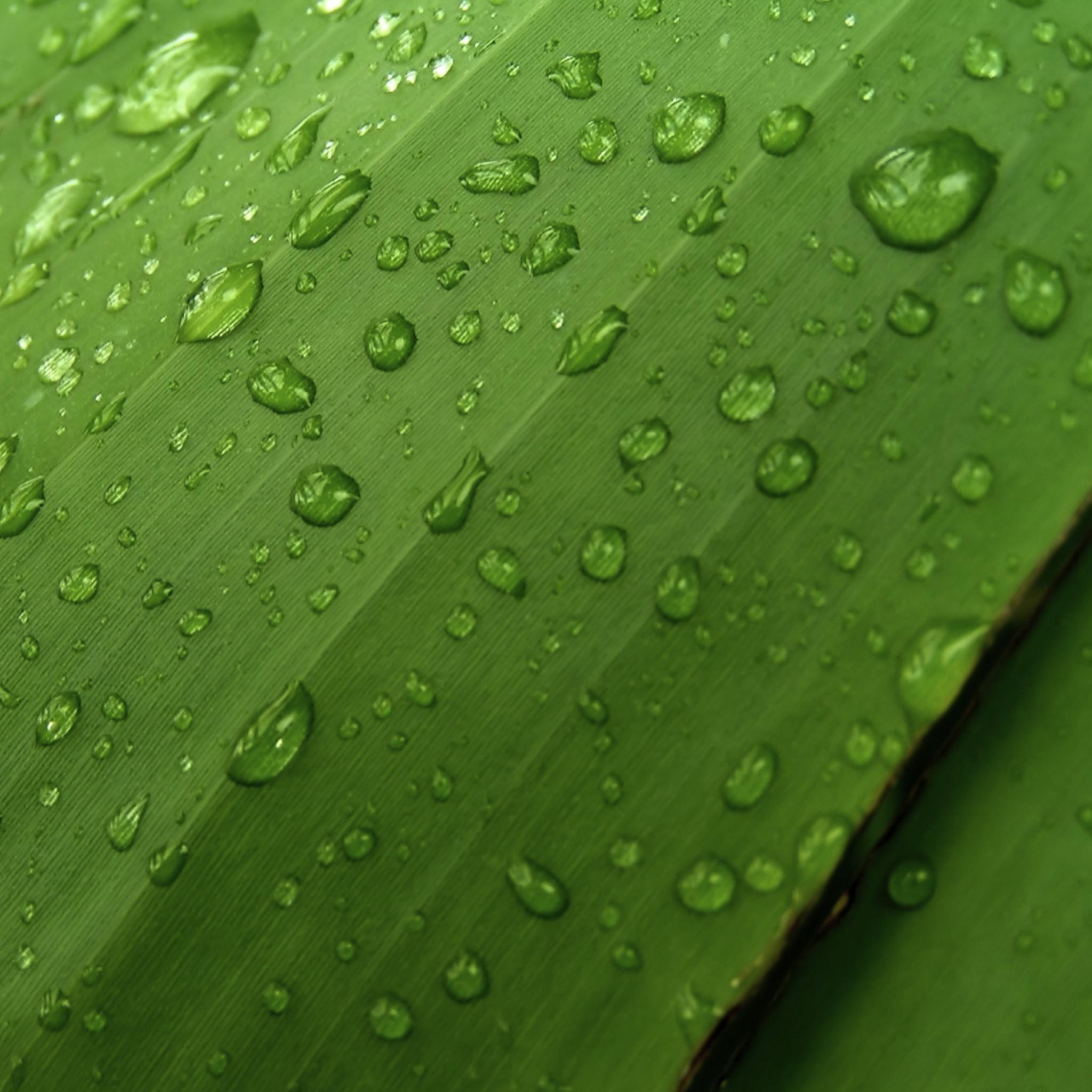 Drop of Water 3W iPad.jpg  Drop of Water   iPad