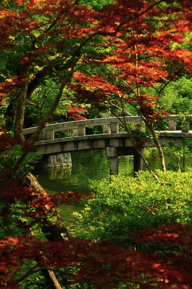 Japanese Garden 3W Japanese Garden