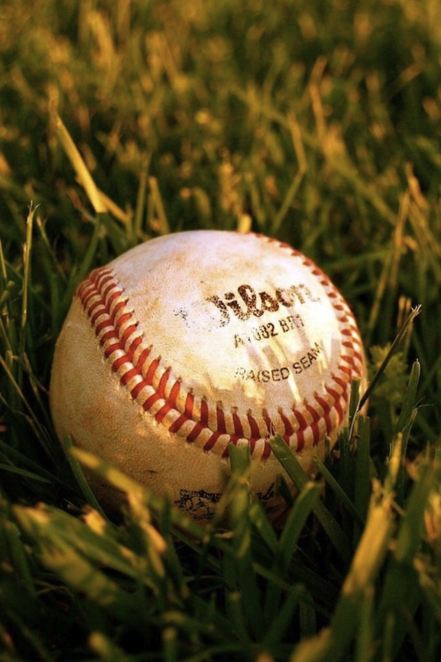 The Baseball In The Grass Wallpaper For Iphone X 8 7 6