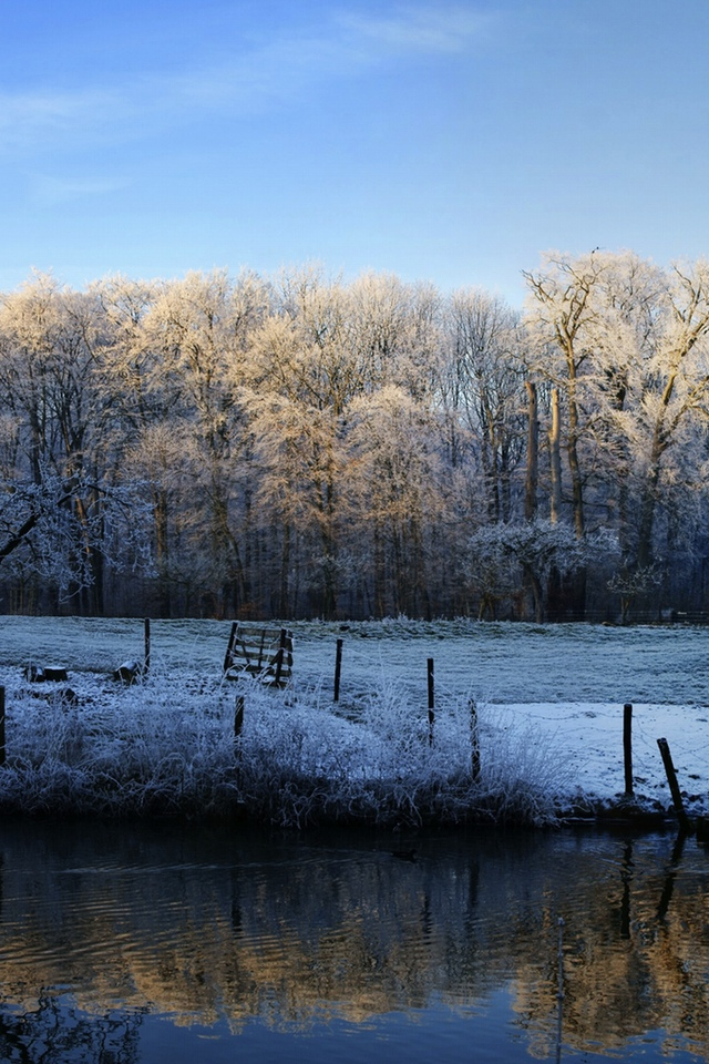 Winter Scene 3W Winter Scene