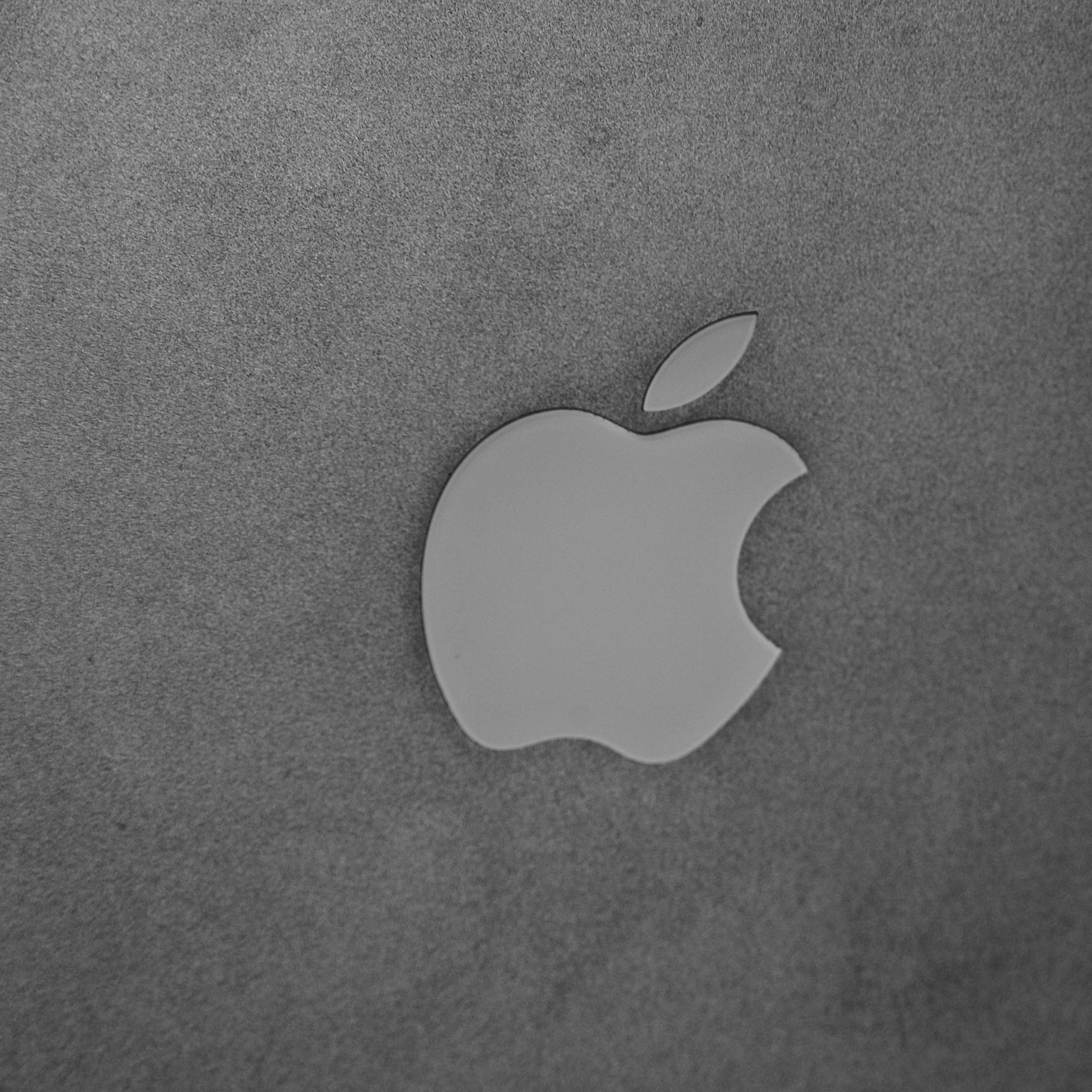 Apple Grey 3Wallpapers iPad Apple Grey   iPad