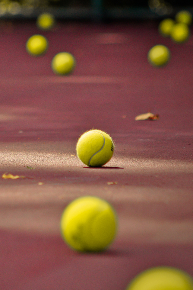 Tennis Ball 3Wallpapers Tennis Ball