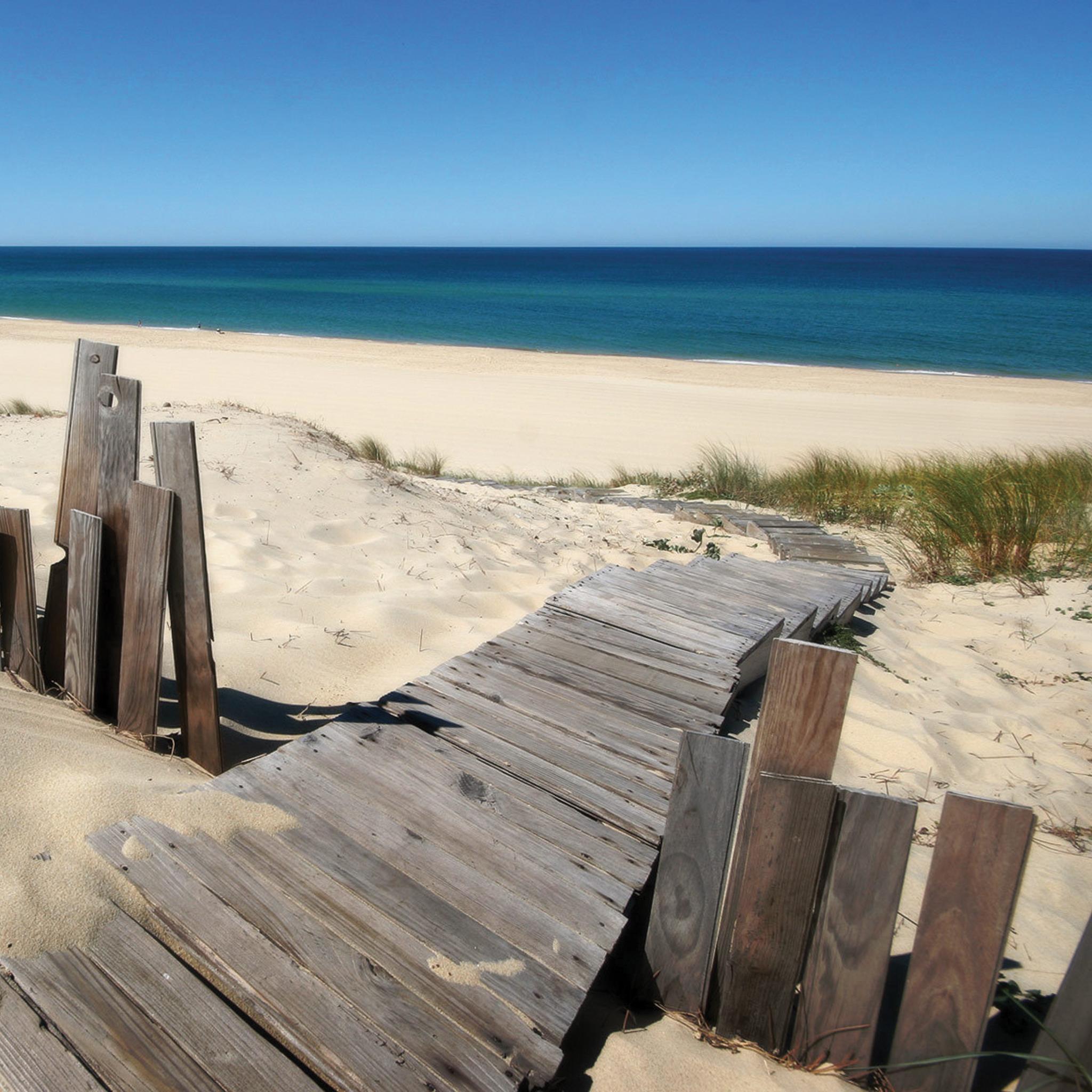 Beach-Way-3Wallpapers-iPad-Retina