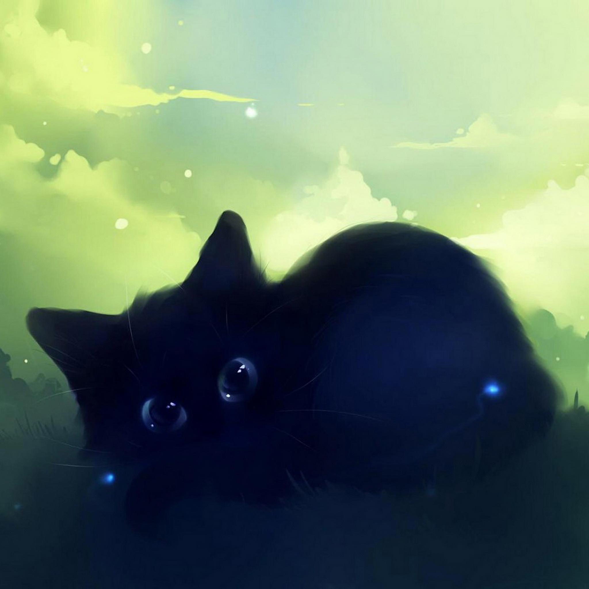 Eyes Black Cat 3Wallpapers iPad Retina Eyes Black Cat   iPad Retina