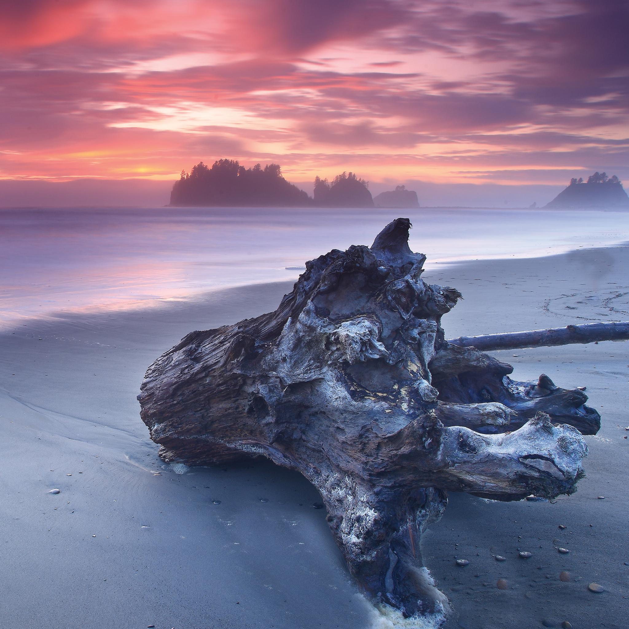 Wood-on-the-Beach