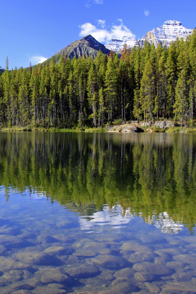 Herbert Lake3Wallpapers Herbert Lake