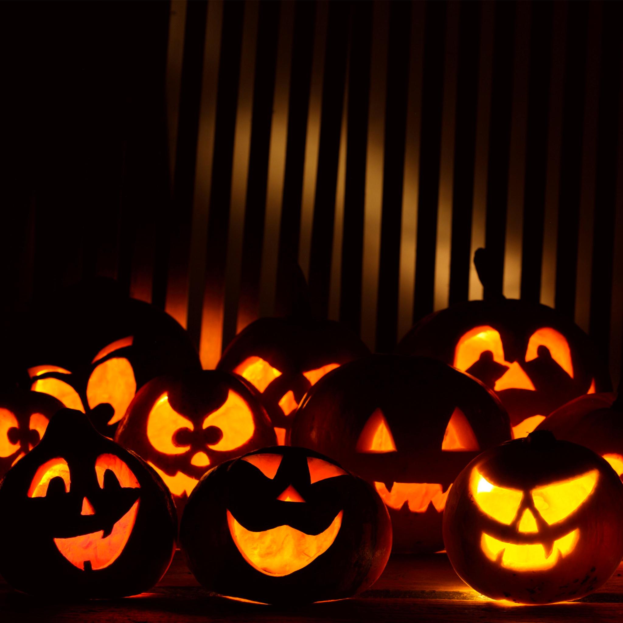 Funny Pumpkins Halloween 3Wallpapers iPad Retina Funny Pumpkins Halloween   iPad Retina
