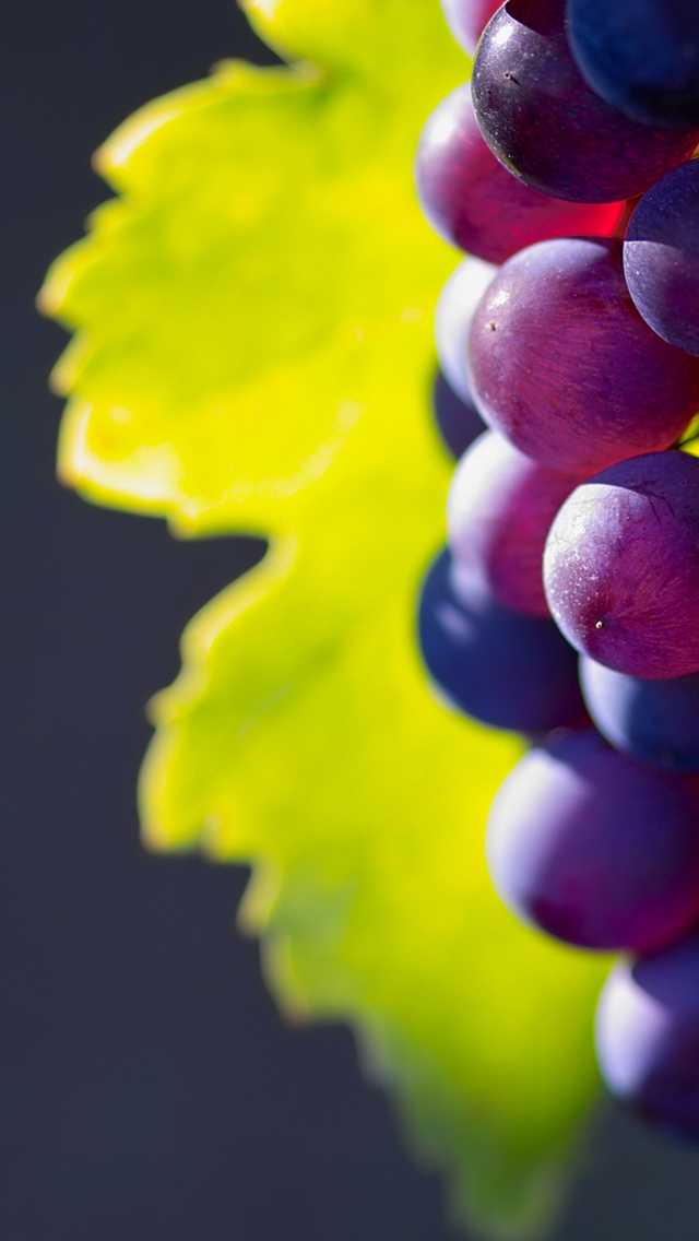 Grappes-3Wallpapers-iPhone-5