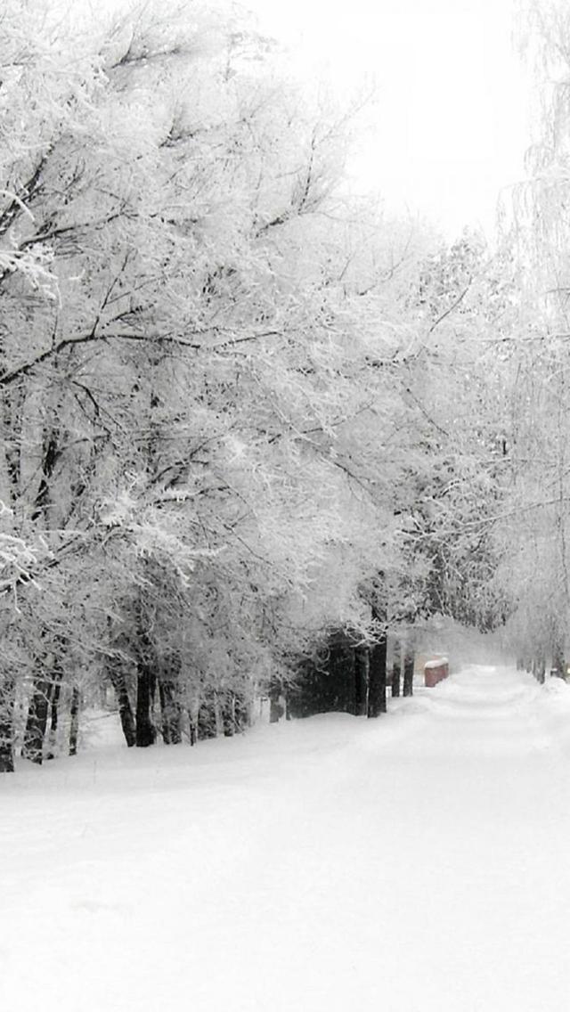 Winter 3Wallpapers iPhone 5 Winter