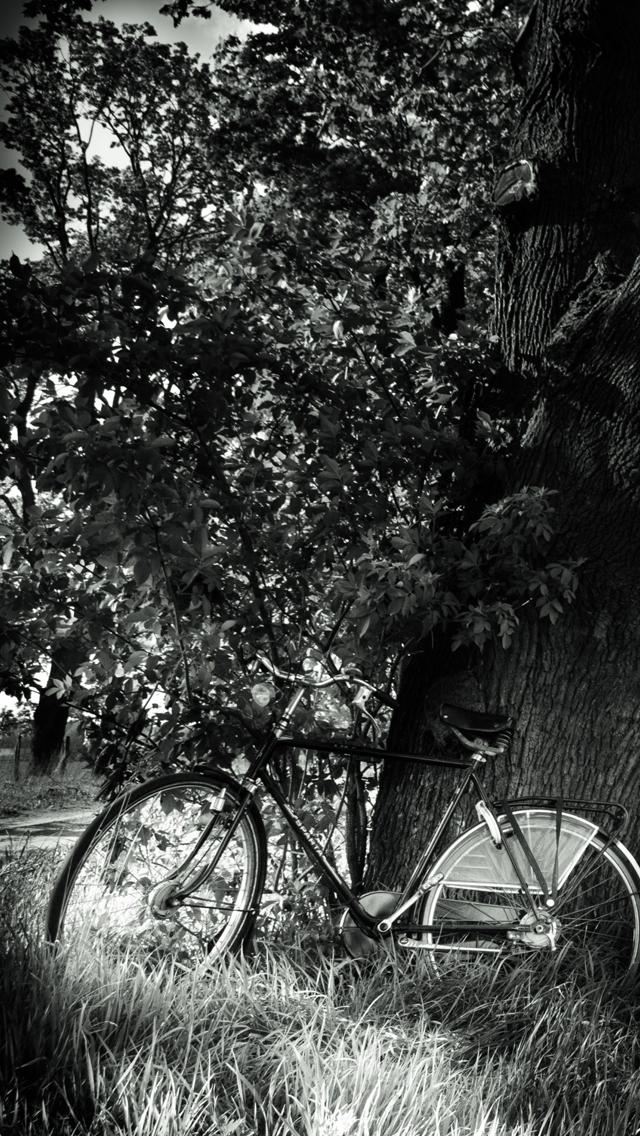 bike-3Wallpapers-iPhone-5