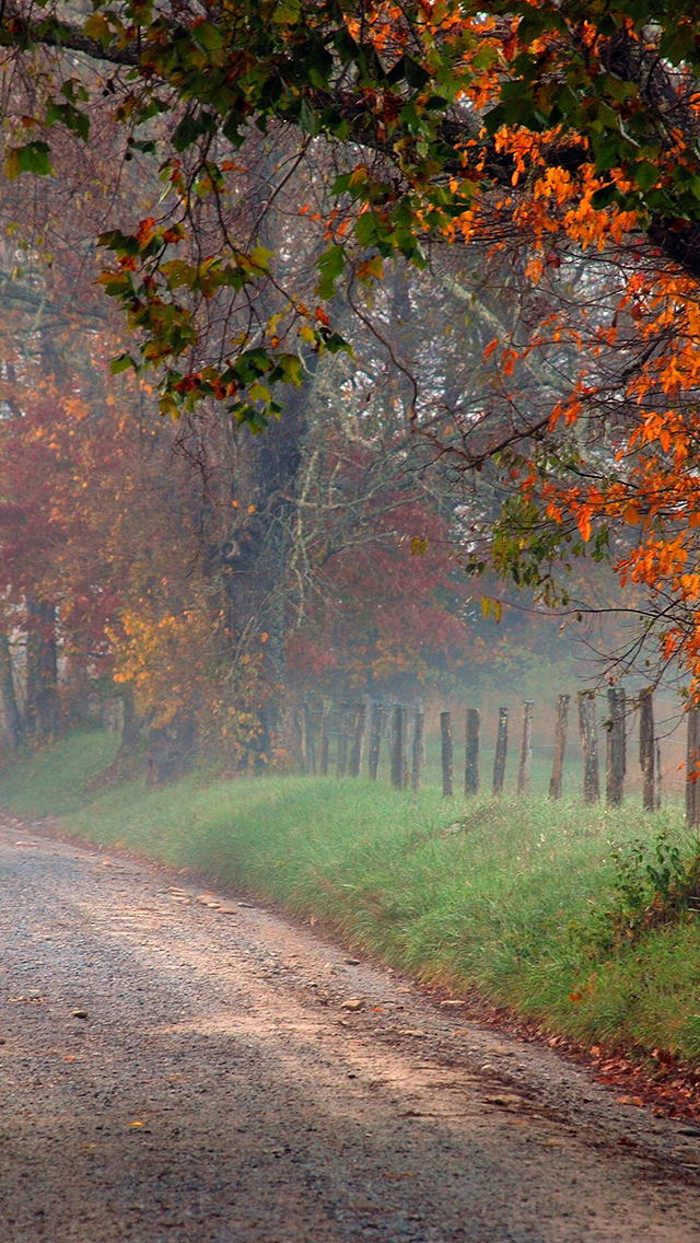 Fall-on-the-Country-Road-3Wallpapers-iPhone-5