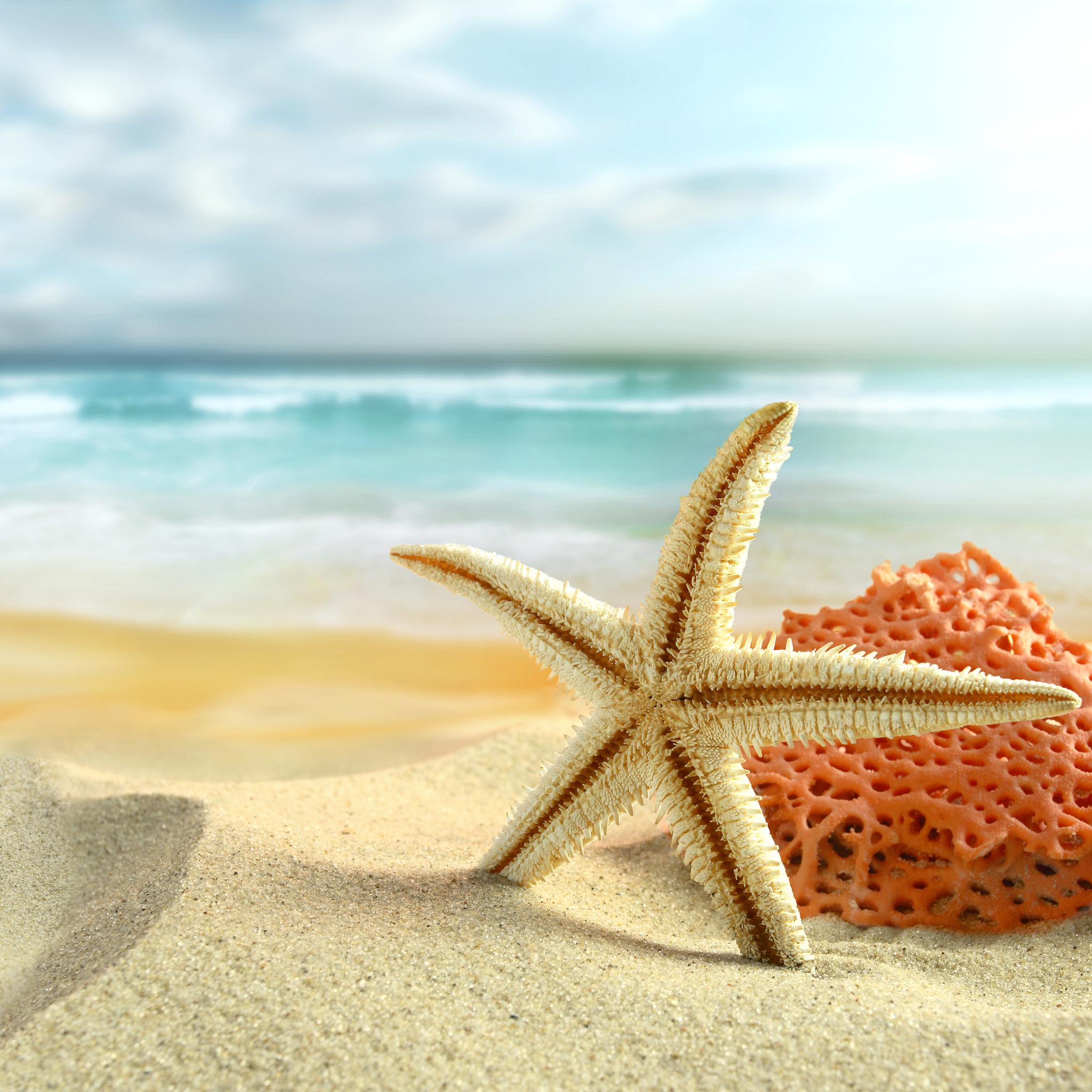 Beach Ipad Retina Wallpaper For Iphone X 8 7 6 Free