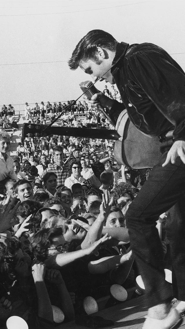Elvis Concert 3Wallpapers iPhone 5 Elvis Concert