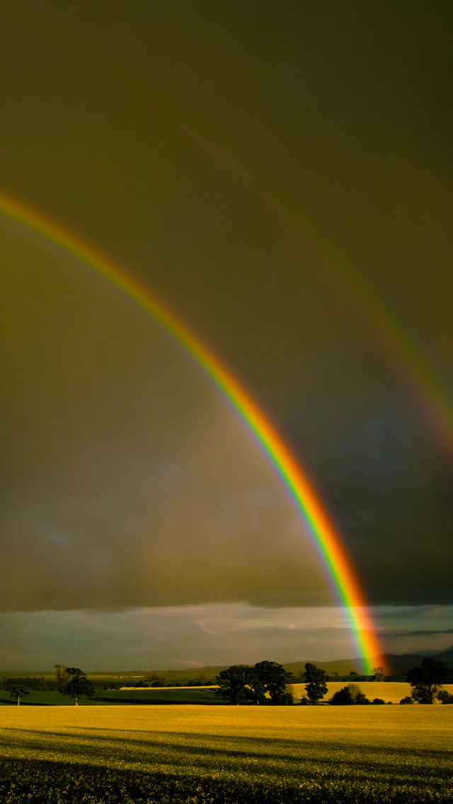 Double Rainbow 3Wallpapers iPhone 5 Double Rainbow