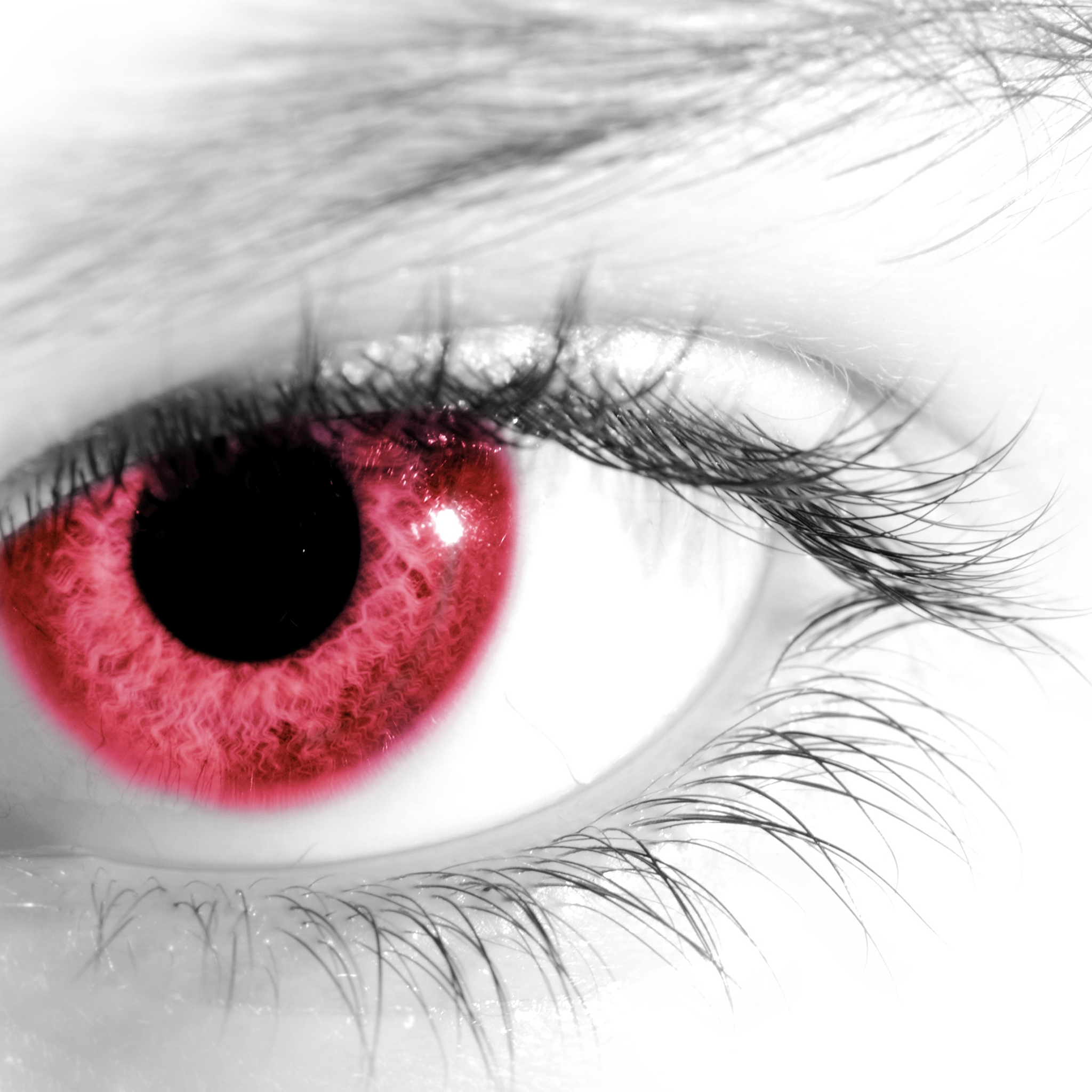 Red Eeye3Wallpapers ipad Retina Red Eye   iPad Retina