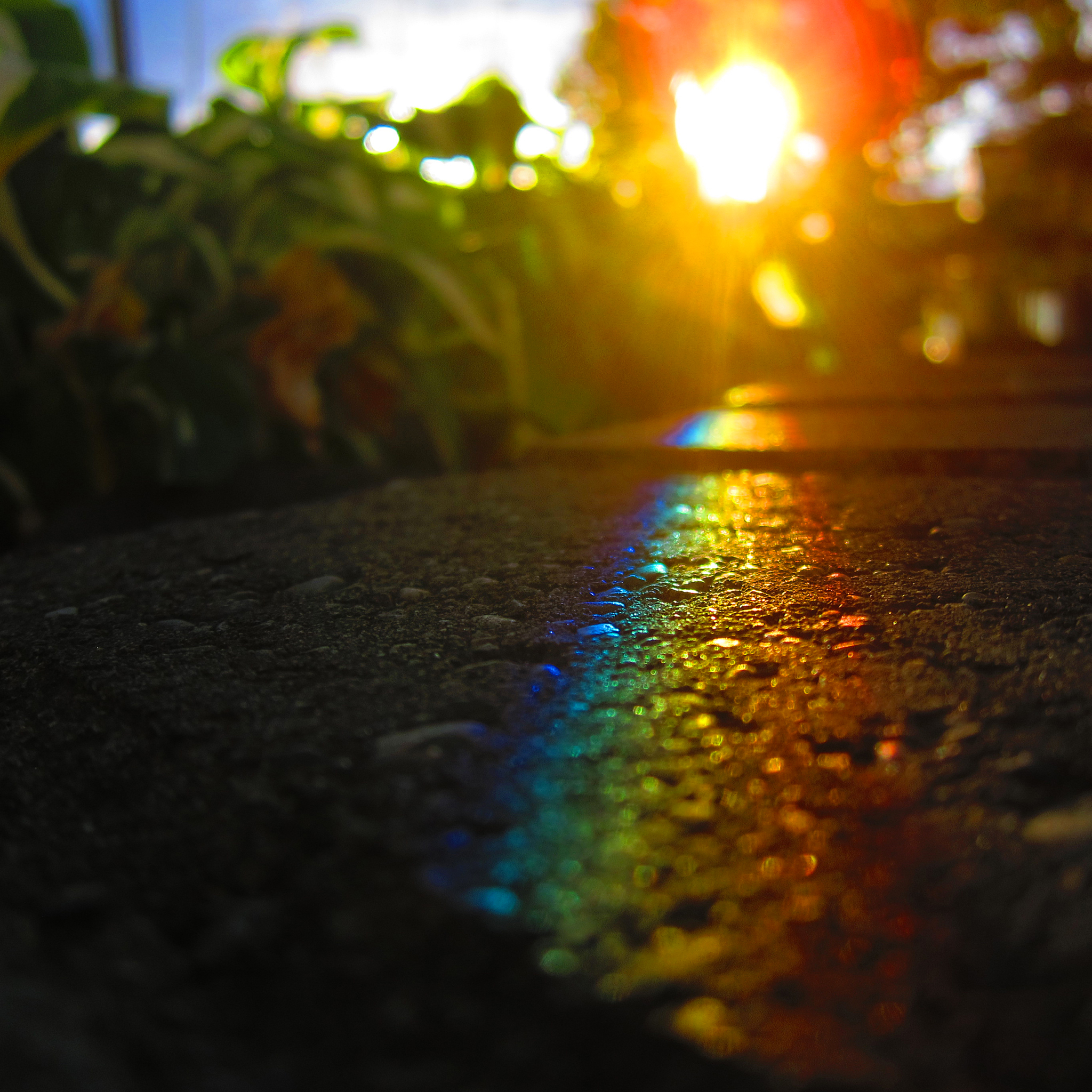Street rainbow 3Wallpapers ipad Retina Street Rainbow   iPad Retina