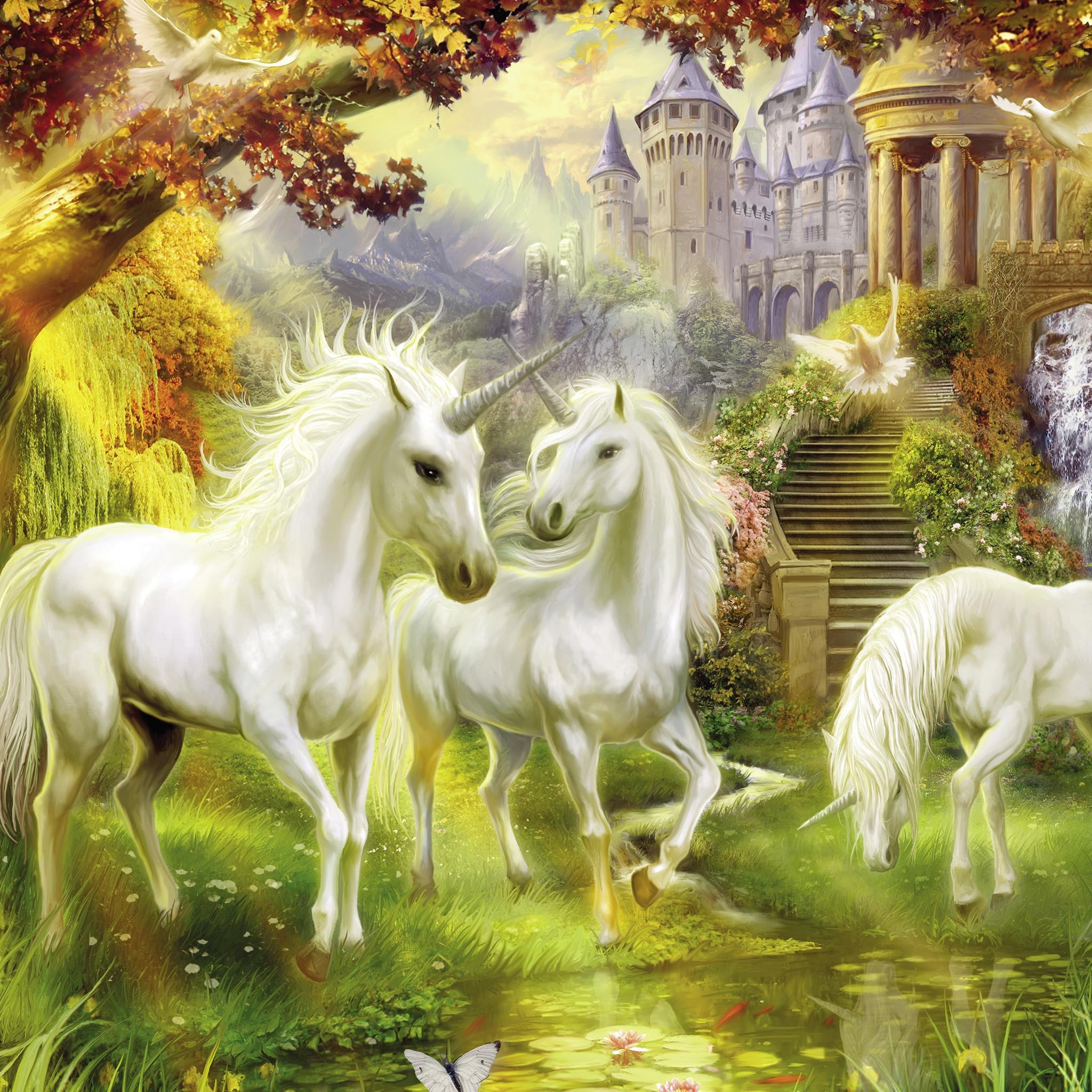 Licorn Paradise 3Wallpapers iPad Retina Licorn Paradise   iPad Retina