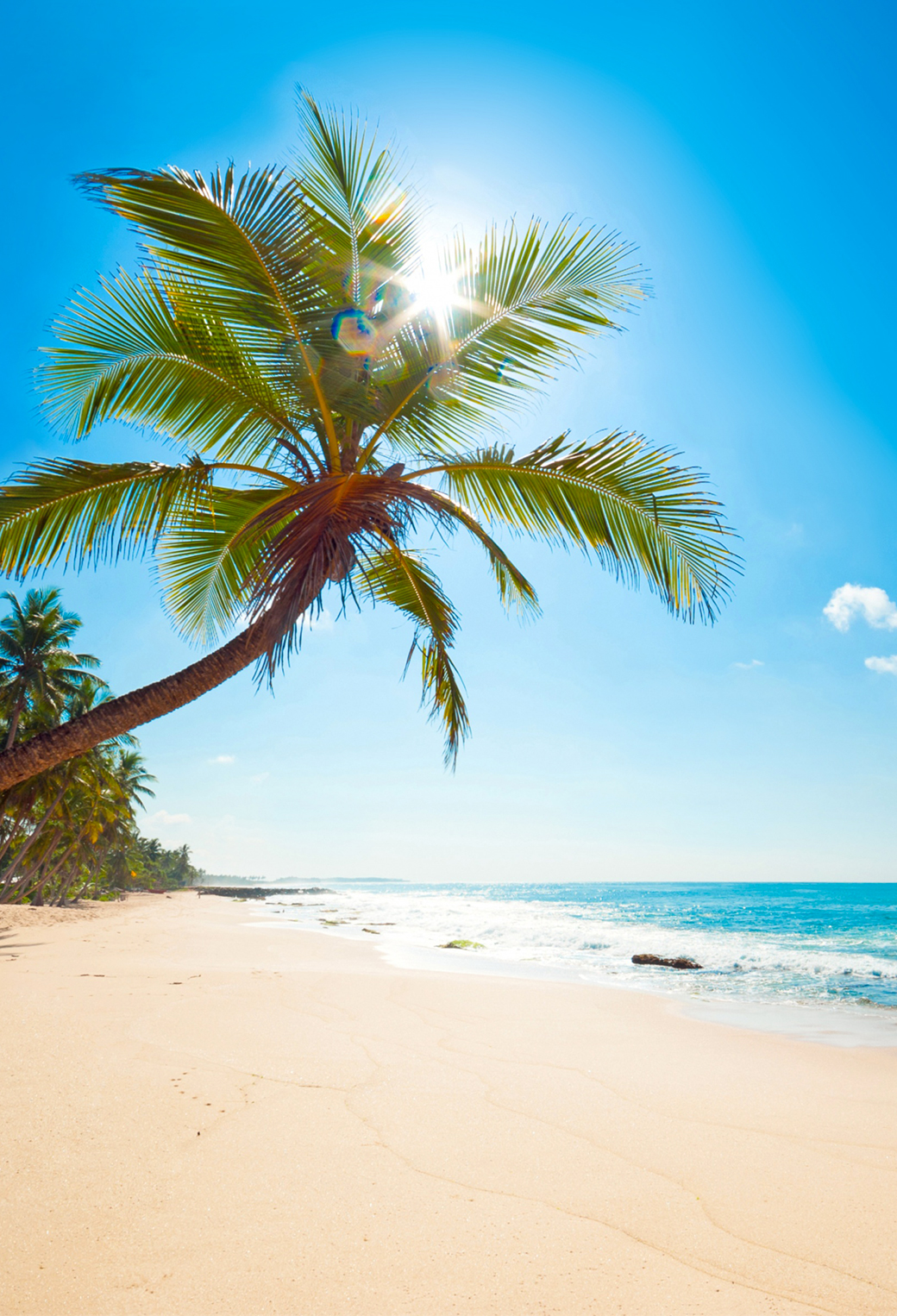 Tropical Sunshine 3Wallpapers iPhone Parallax Tropical Sunshine