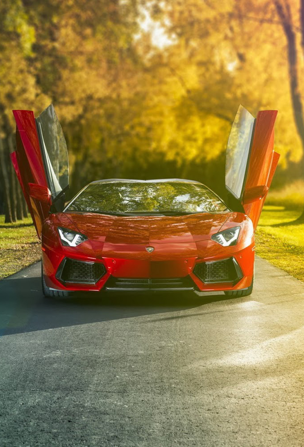 Lambo Wallpaper For Iphone X 8 7 6 Free Download On 3wallpapers