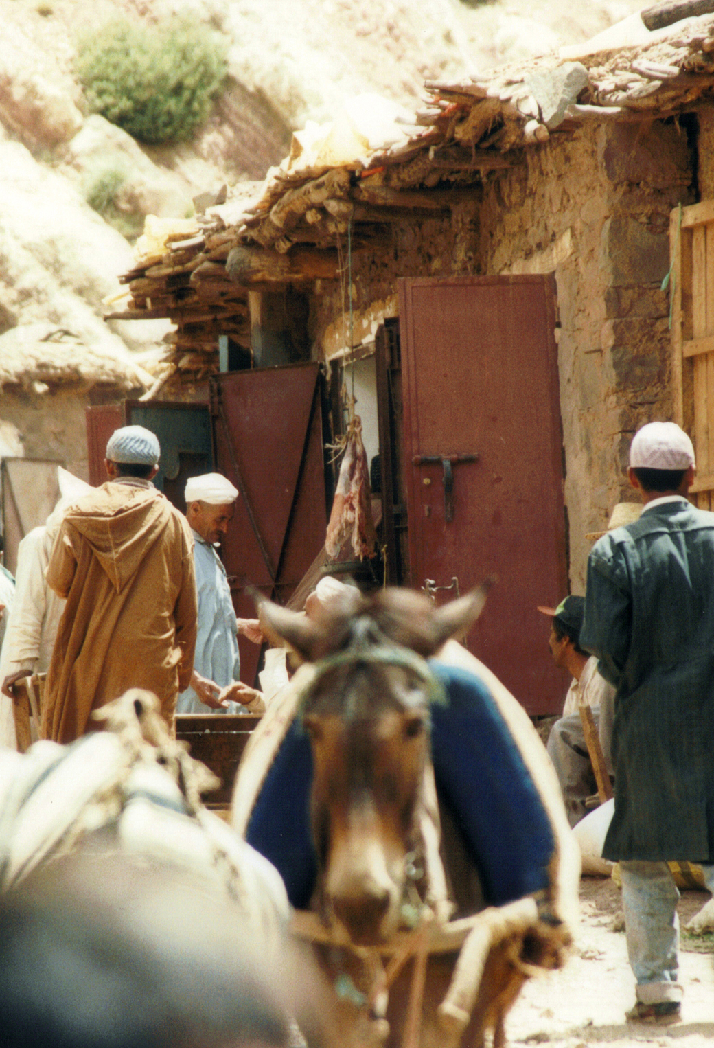 Maroc 3Wallpapers iphone Parallax Maroc