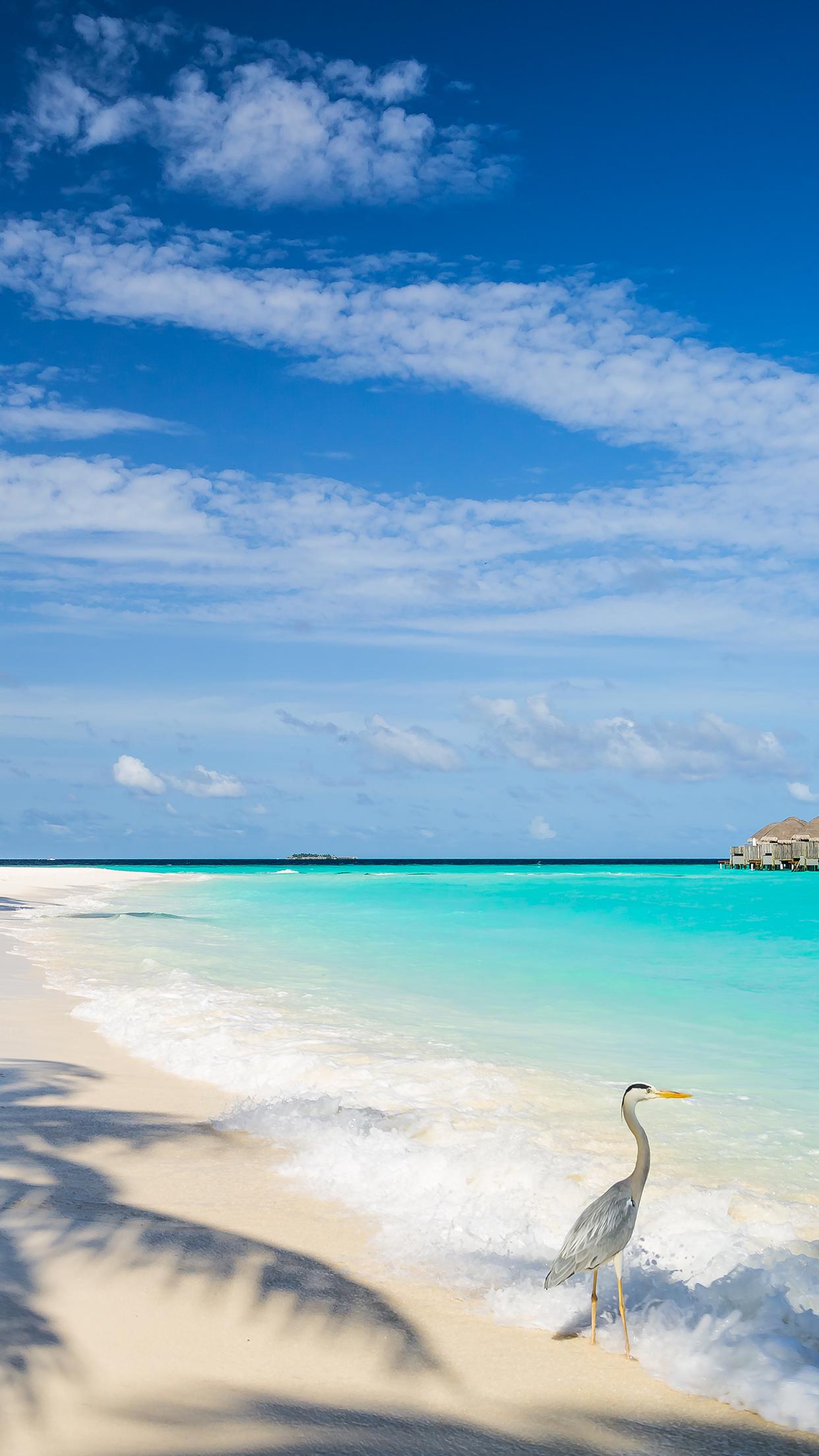 Maldives Beach 3Wallpapers iphone Parallax Maldives Beach