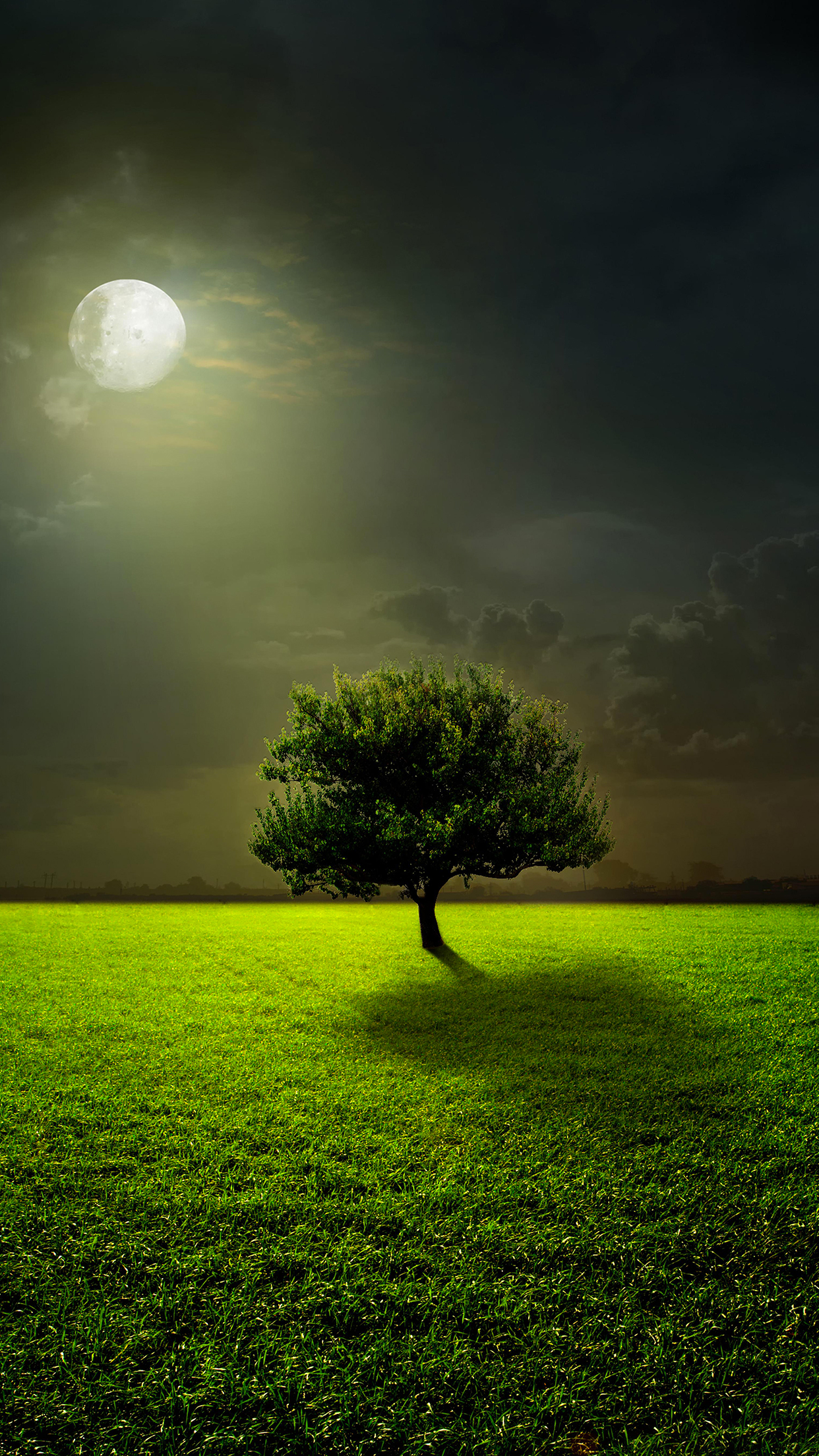 Moon lighting tree wallpaper for iphone x 8 7 6 free - Nature wallpaper note 8 ...