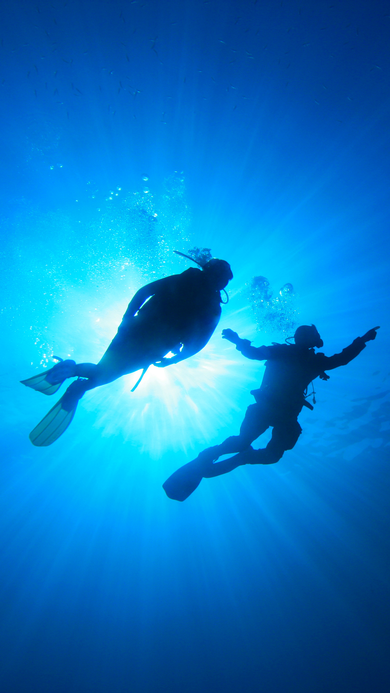 Diving Backlight iPhone 3Wallpapers Parallax Diving Backlight