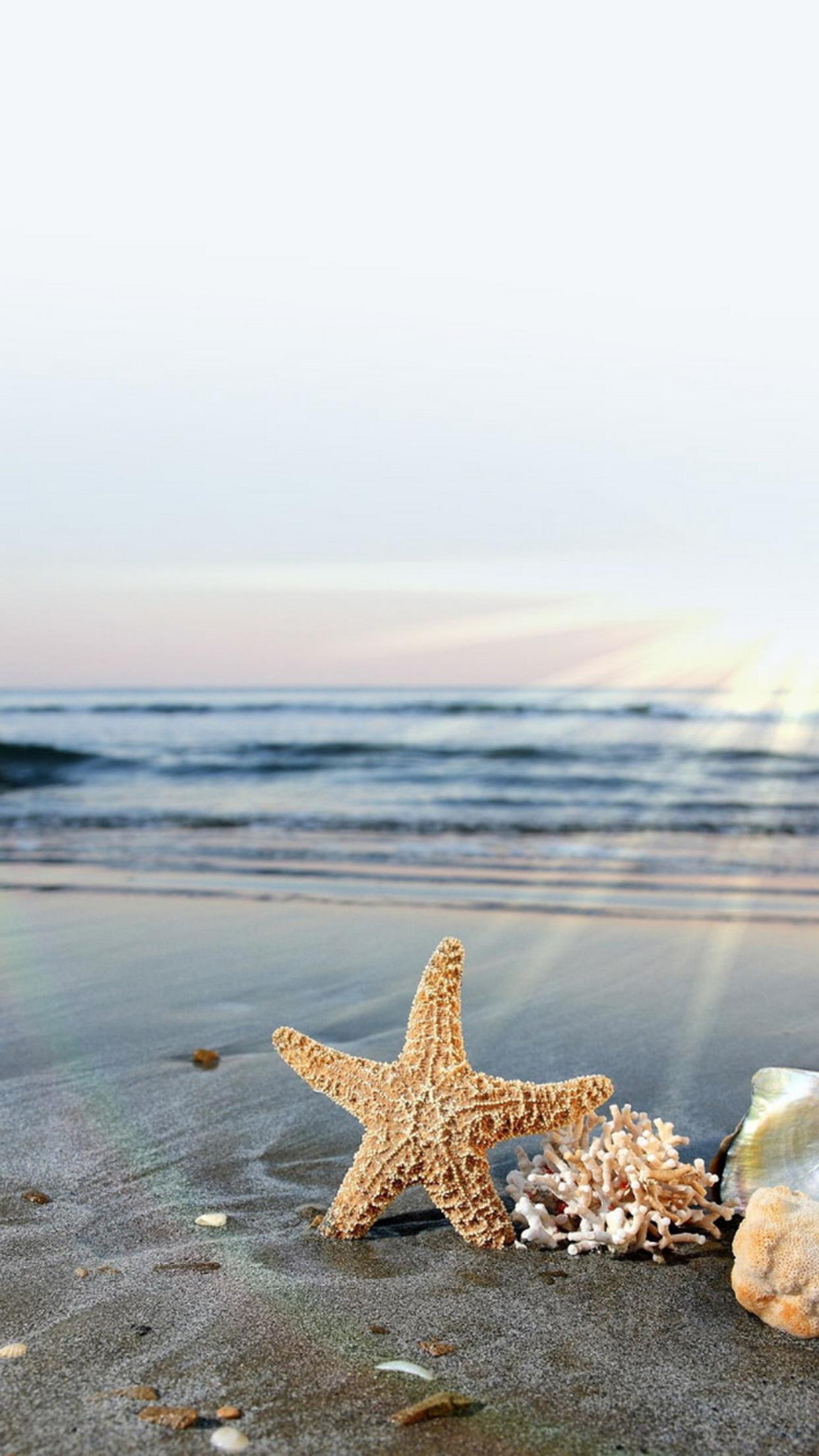 plage etoile mer 3Wallpapers iPhone Parallax Beach sea star