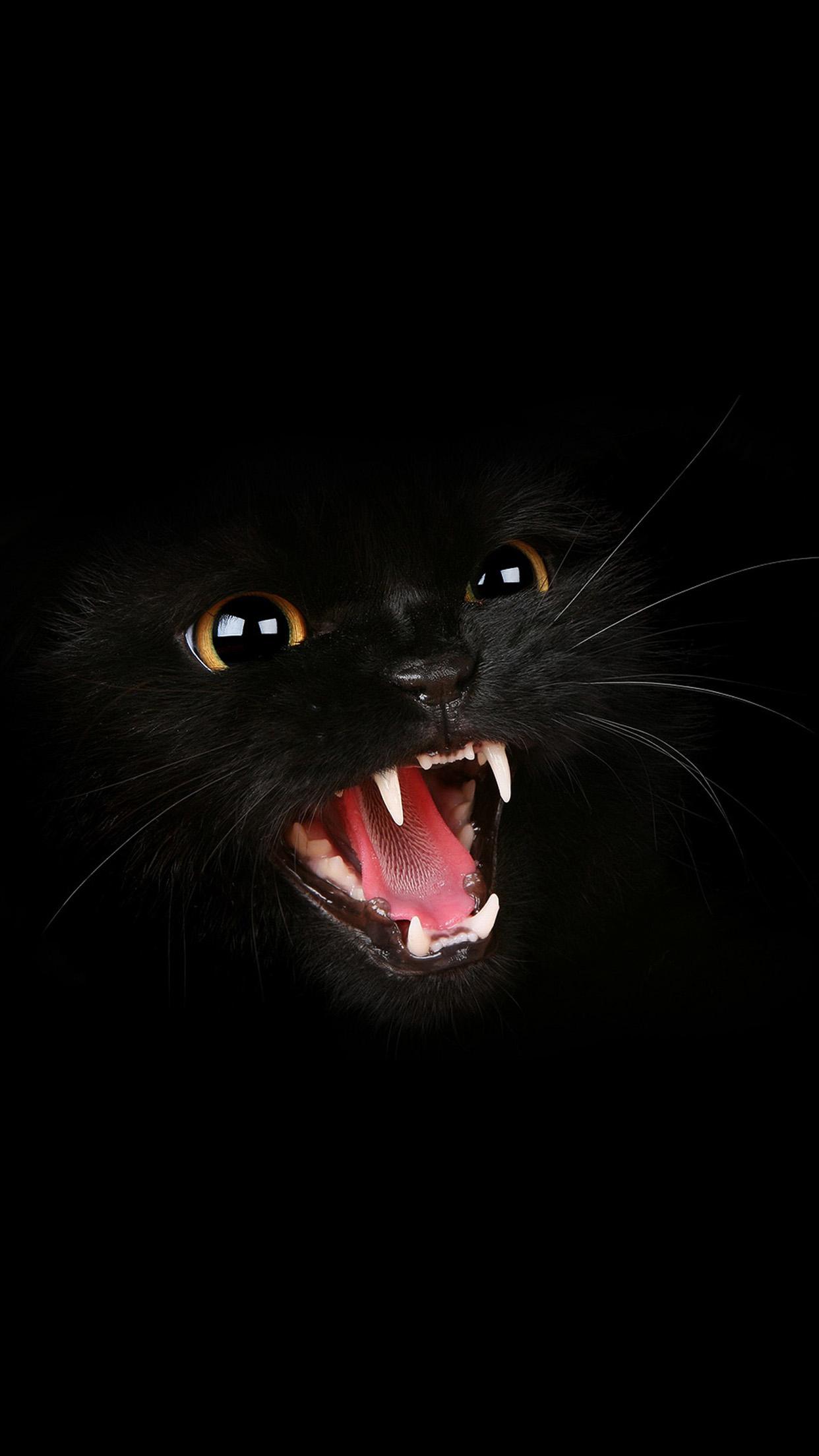 cat roar 3Wallpapers iPhone Parallax.jpg Cat Roar