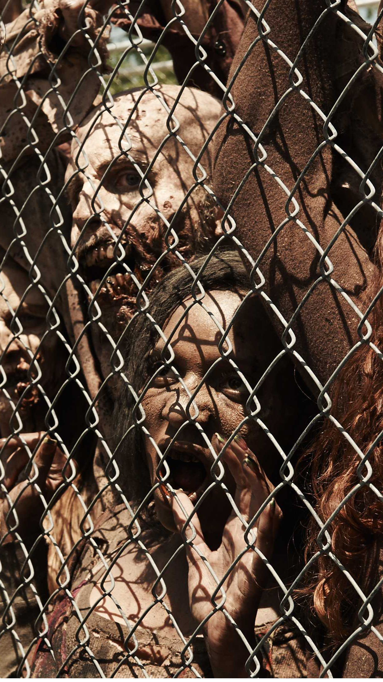 walking dead grillage 3Wallpapers iPhone Parallax Walking Dead Grilling