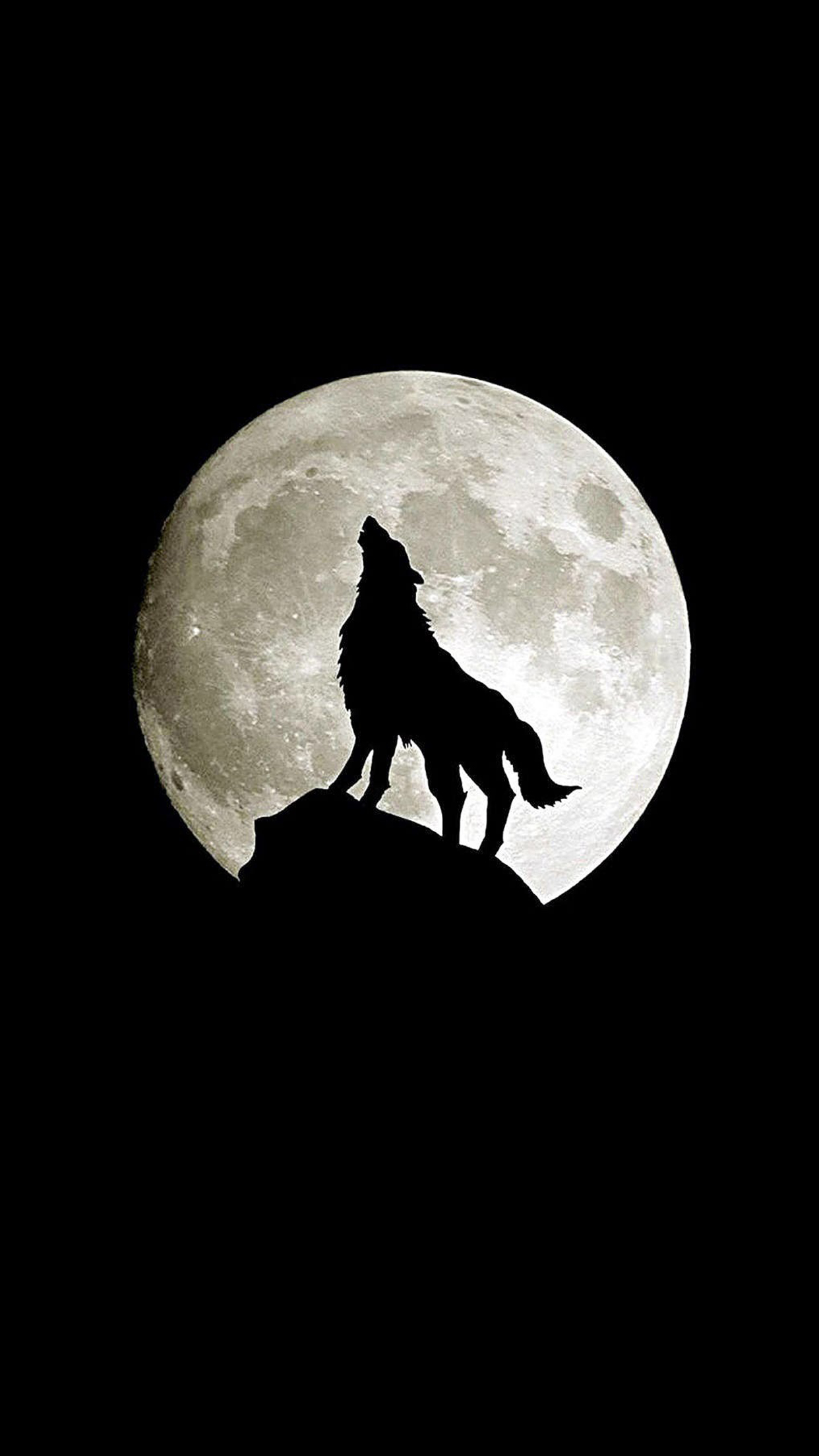 Loup en pleine lune wallpaper for iphone x 8 7 6 free for Photo fond ecran iphone