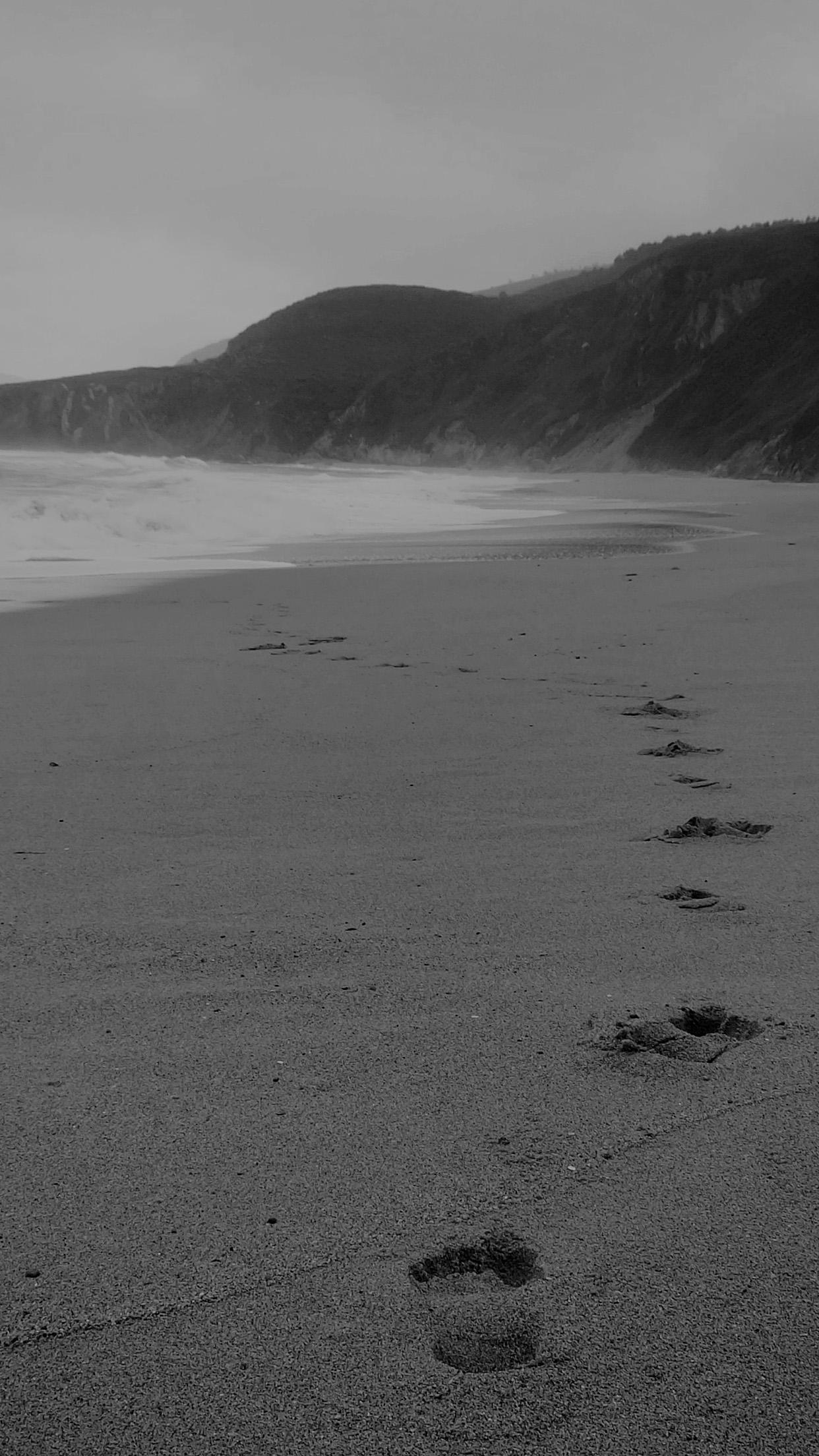Beach Naked walk 3Wallpapers iPhone Parallax 3Wallpapers : notre sélection de fonds d'écran du 02/12/2016