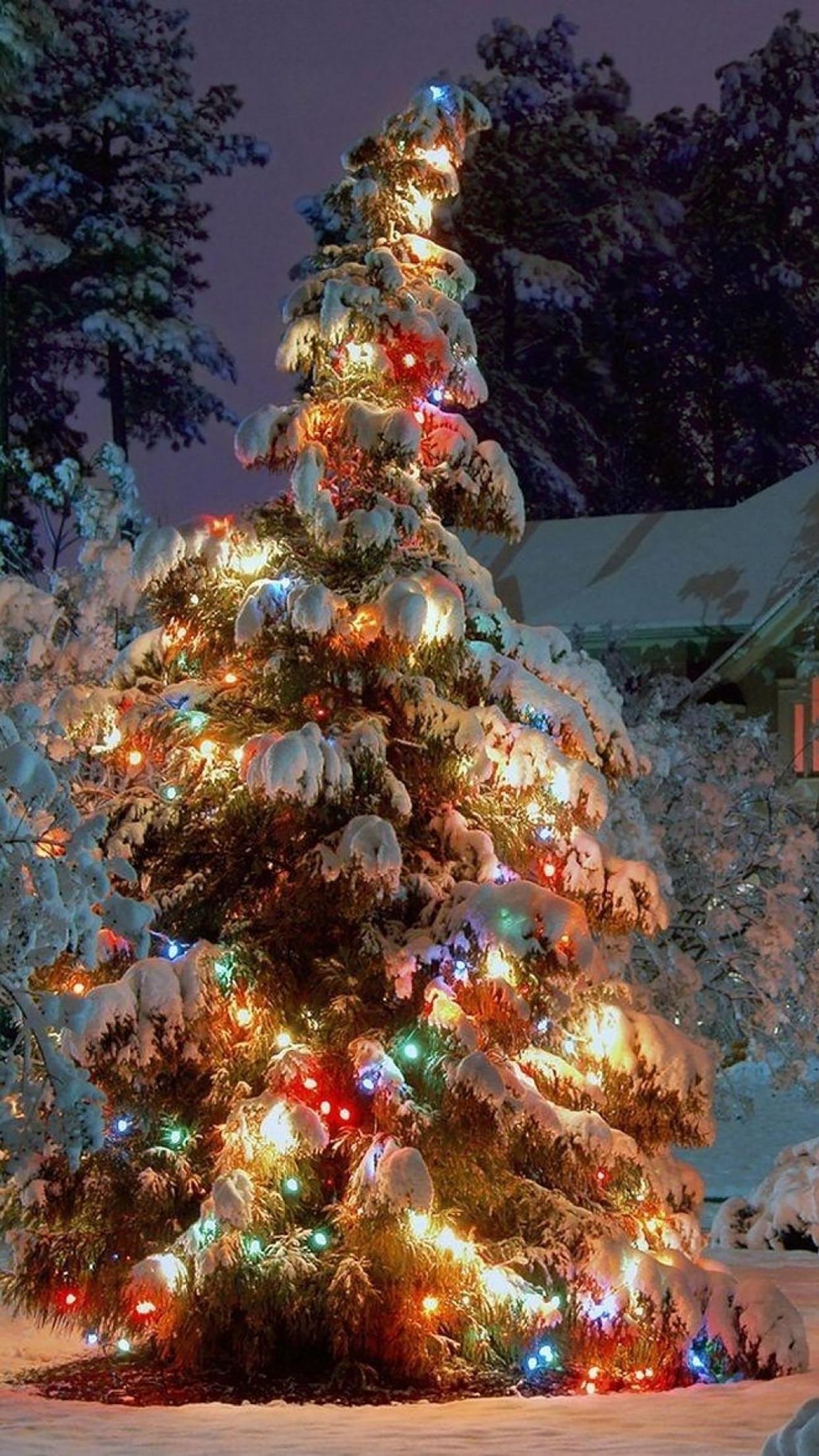 Christmas Sapin Sous la Neige 3Wallpapers iPhone Parallax 3Wallpapers : notre sélection de fonds décran du 13/12/2016