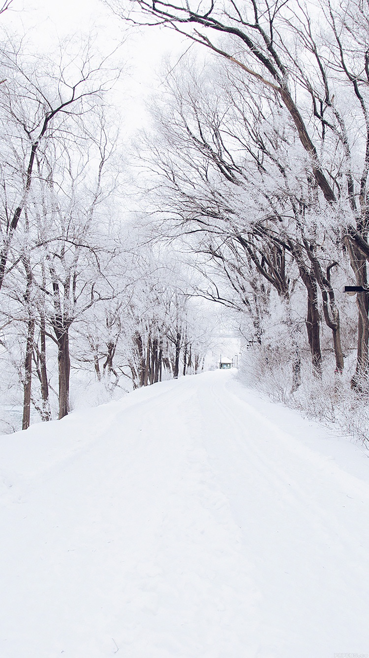 Snow Road Romantic 3Wallpapers iPhone Parallax 1 Snow Road : Romantic