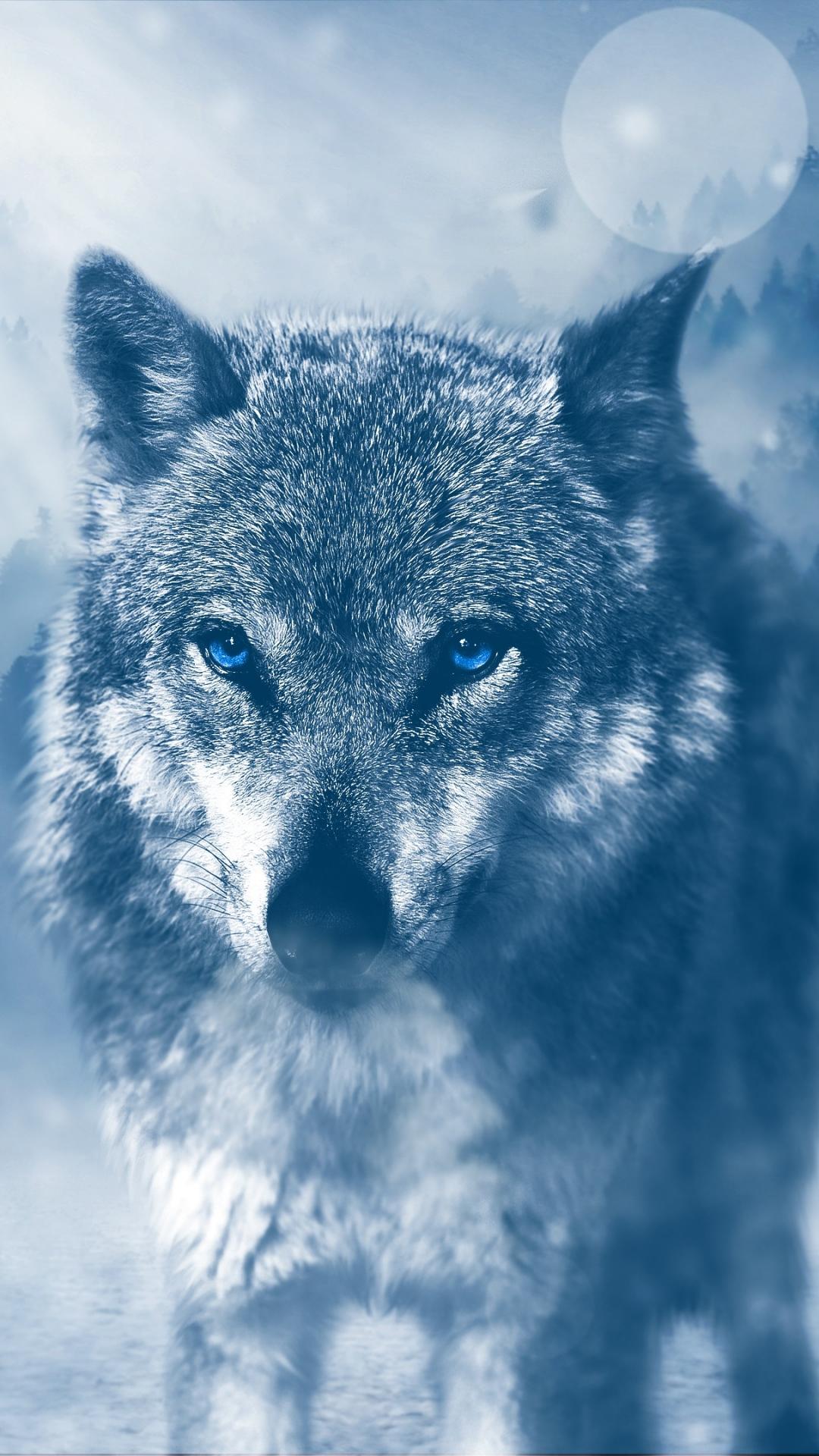 iphone wallpaper wolf predator photoshop look 3Wallpapers : notre sélection de fonds décran iPhone du 19/08/2017