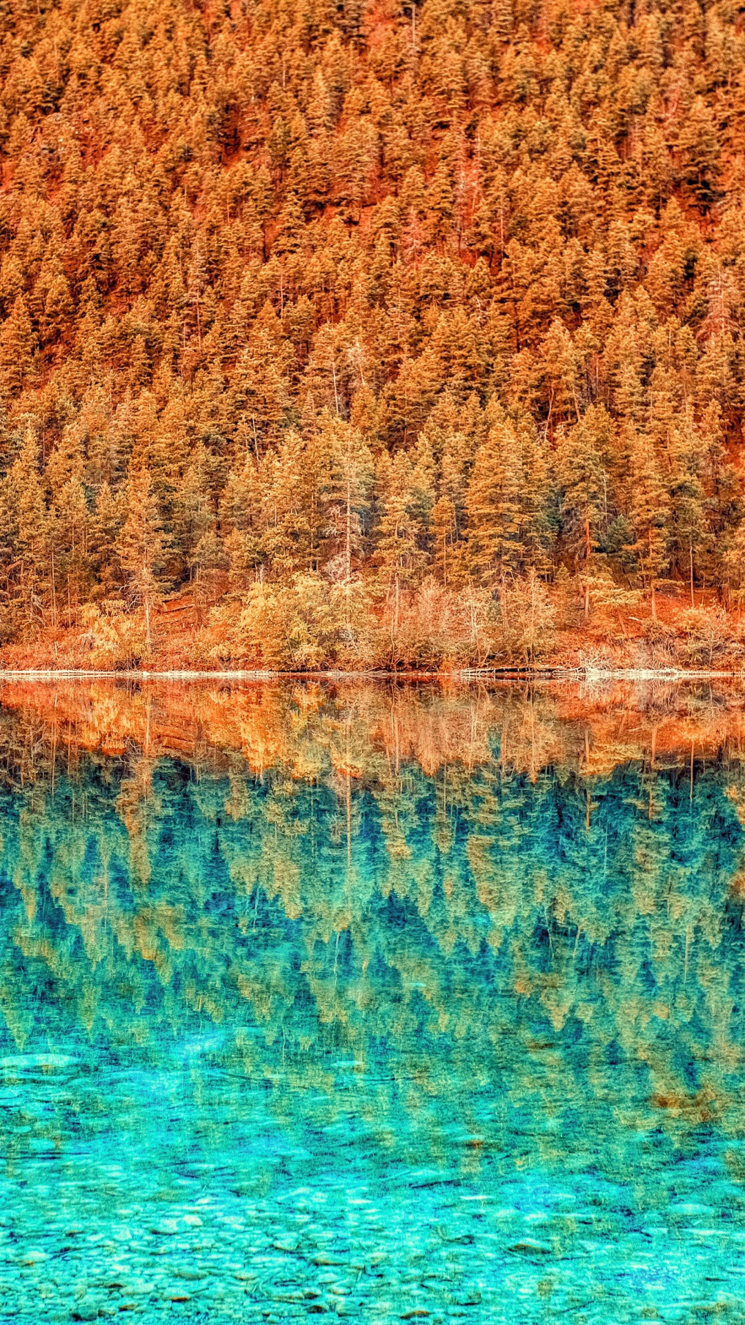 iPhone wallpaper 3wallpapers lake trees reflection 3Wallpapers : notre sélection de fonds décran du 02/10/2017