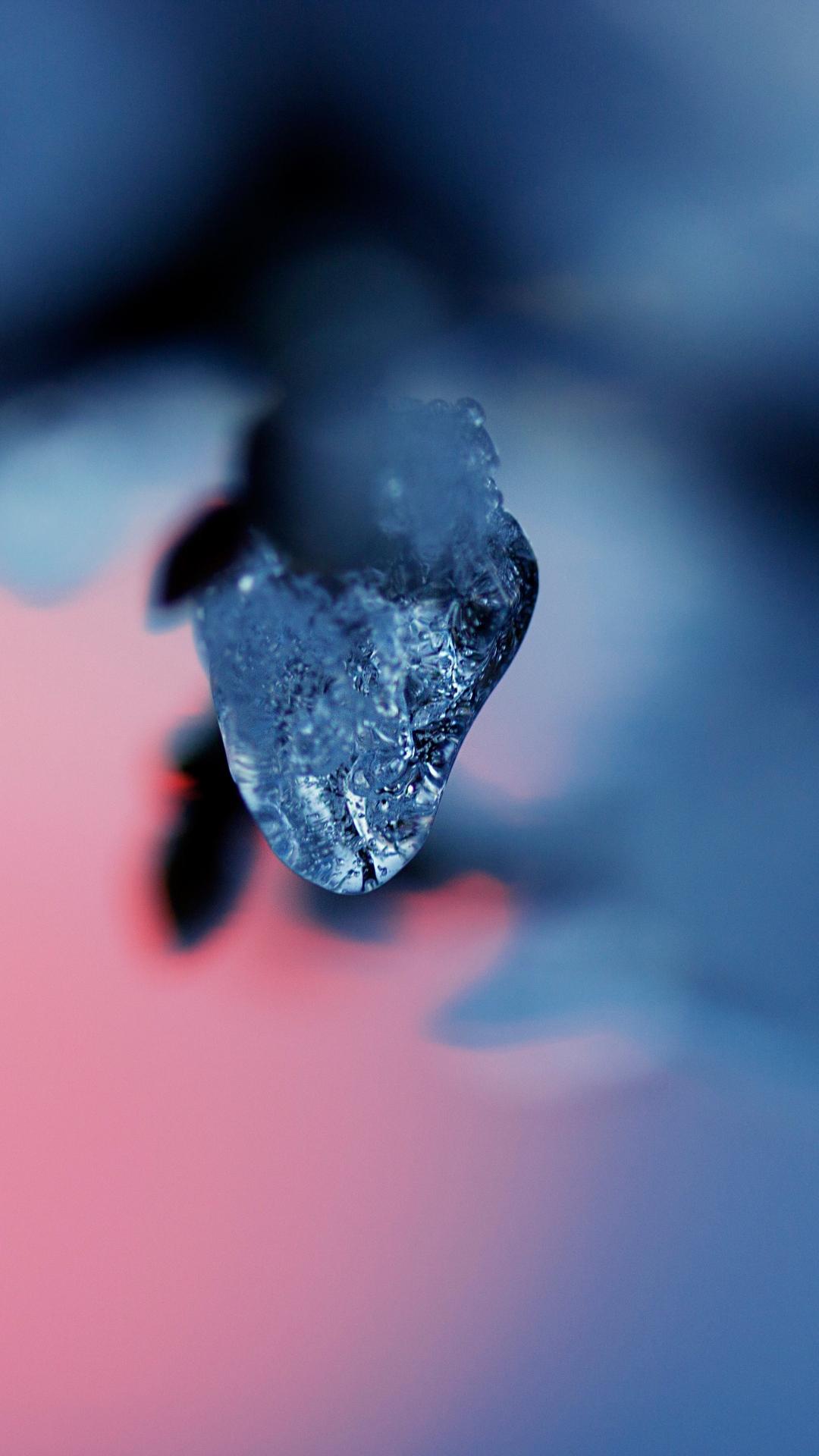 iphone wallpaper ice snow branch blur Ice
