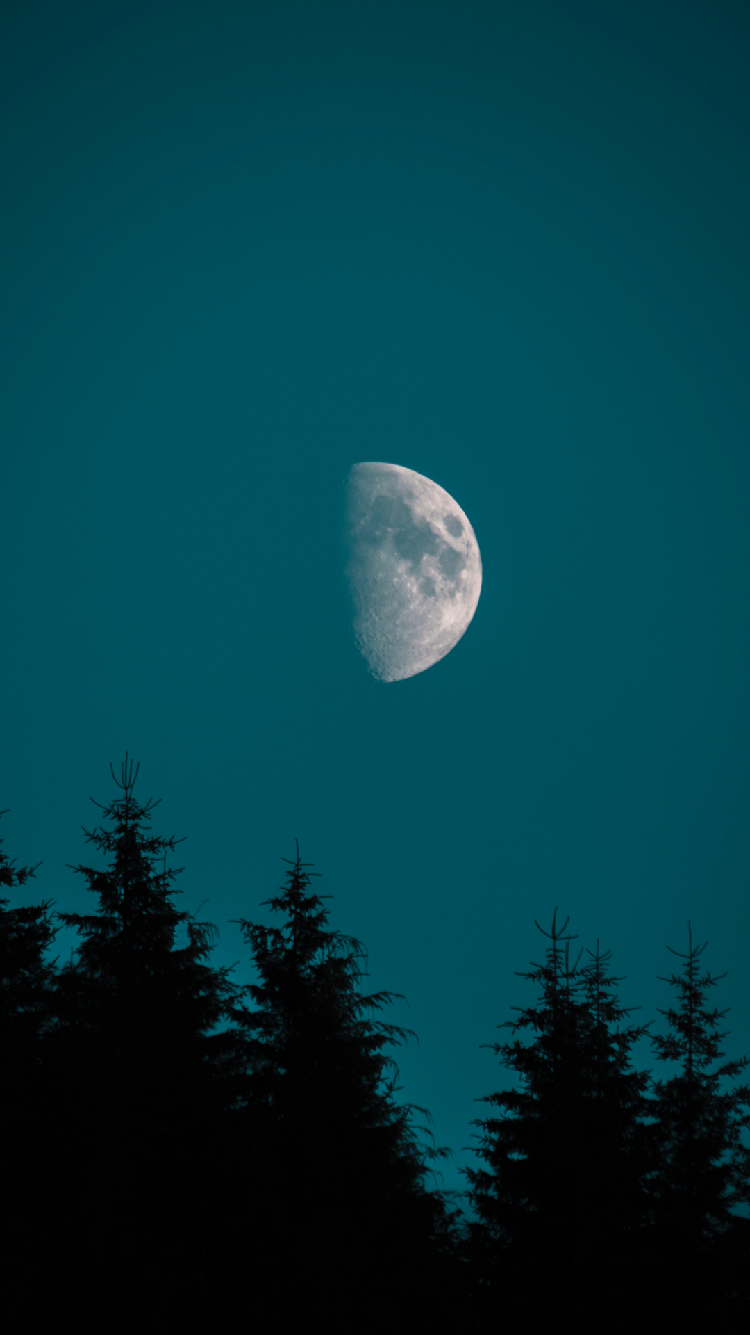 iPhone WallpaperHalf Moon Over Pine Moon