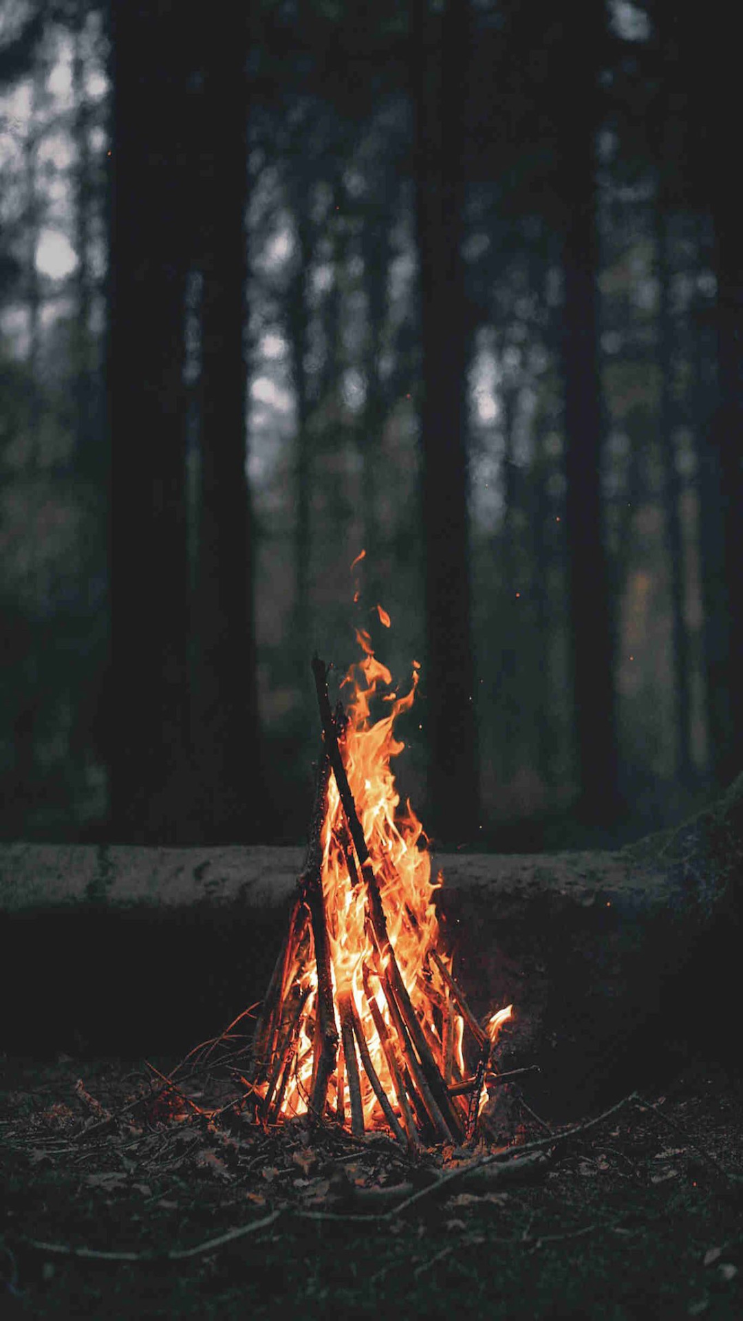 iPhone wallpaper campfire2 3Wallpapers : notre sélection de fonds d'écran du 12/02/2018