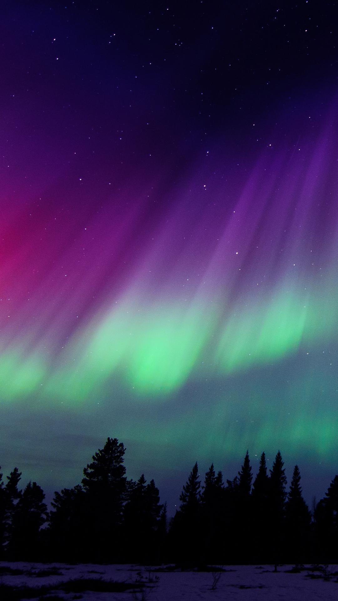 iPhone wallpaper northern lights trees 3Wallpapers : notre sélection de fonds d'écran du 21/02/2018