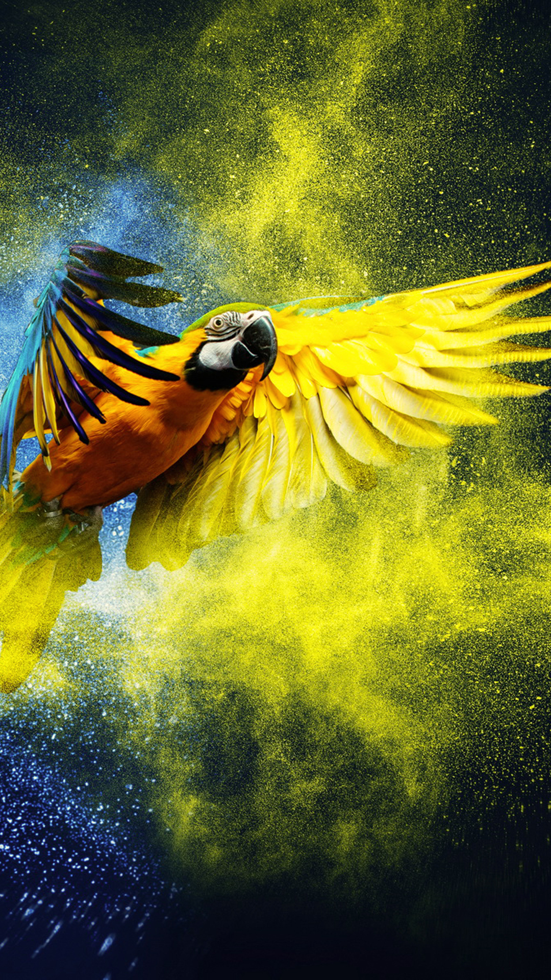 iPhone wallpaper parrot yellow Parrot