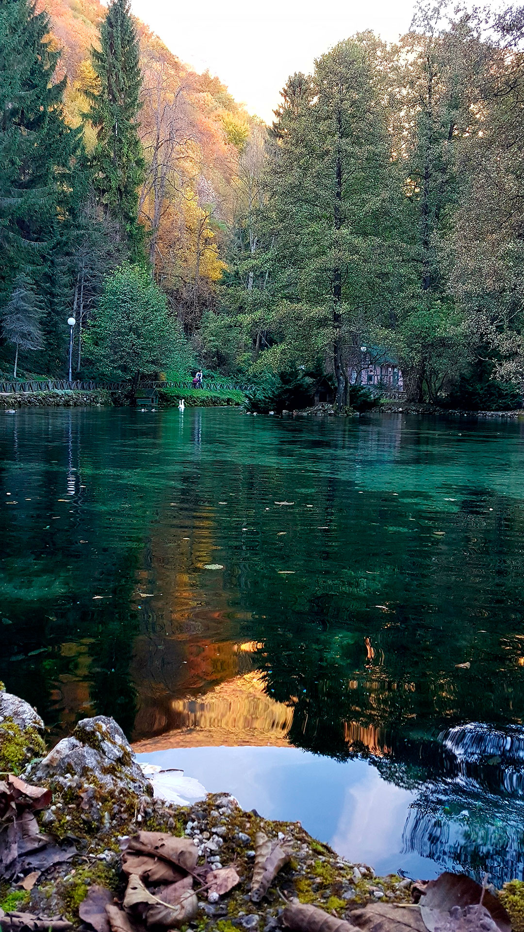 iPhone wallpaper lake trees 3Wallpapers : notre sélection de fonds d'écran du 25/04/2018