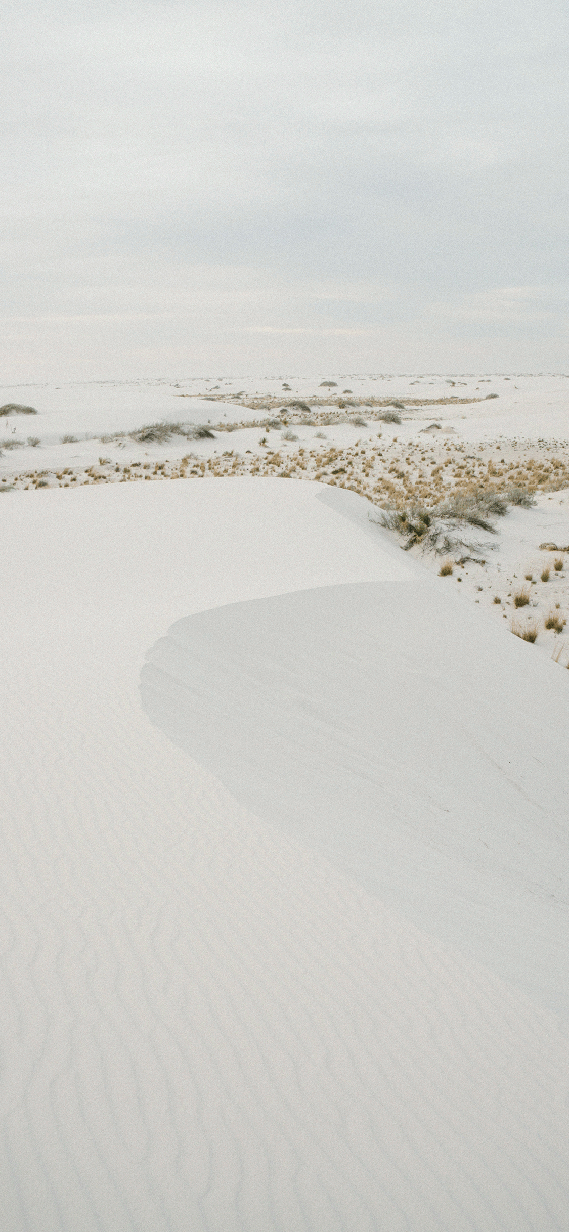 iPhone wallpaper desert white sands Fonds d'écran iPhone du 30/08/2018
