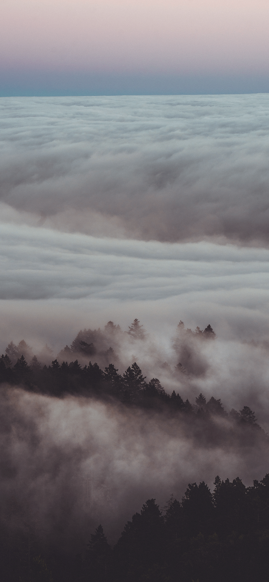 iPhone wallpaper fog mount tamalpais Fog