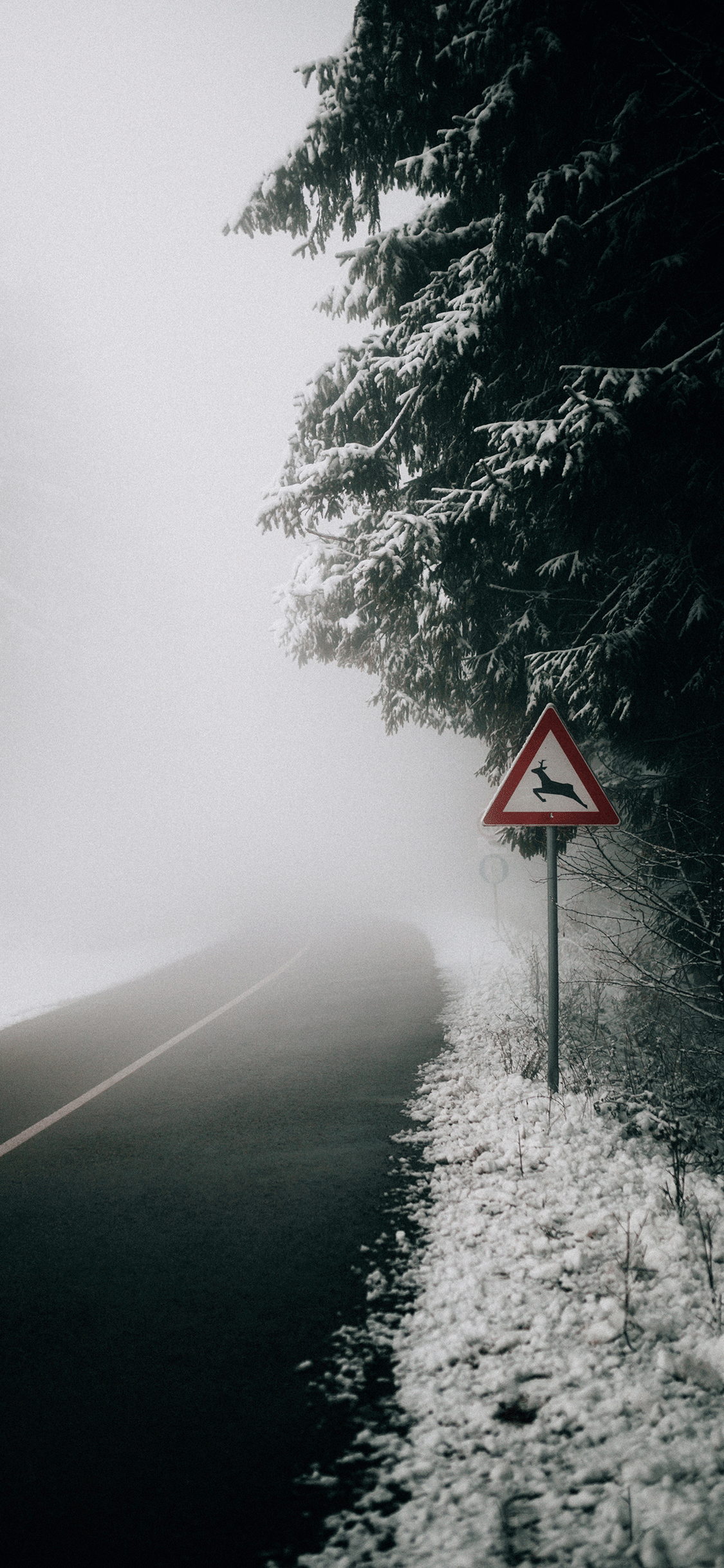 iPhone wallpaper fog road serbia Fonds d'écran iPhone du 16/08/2018